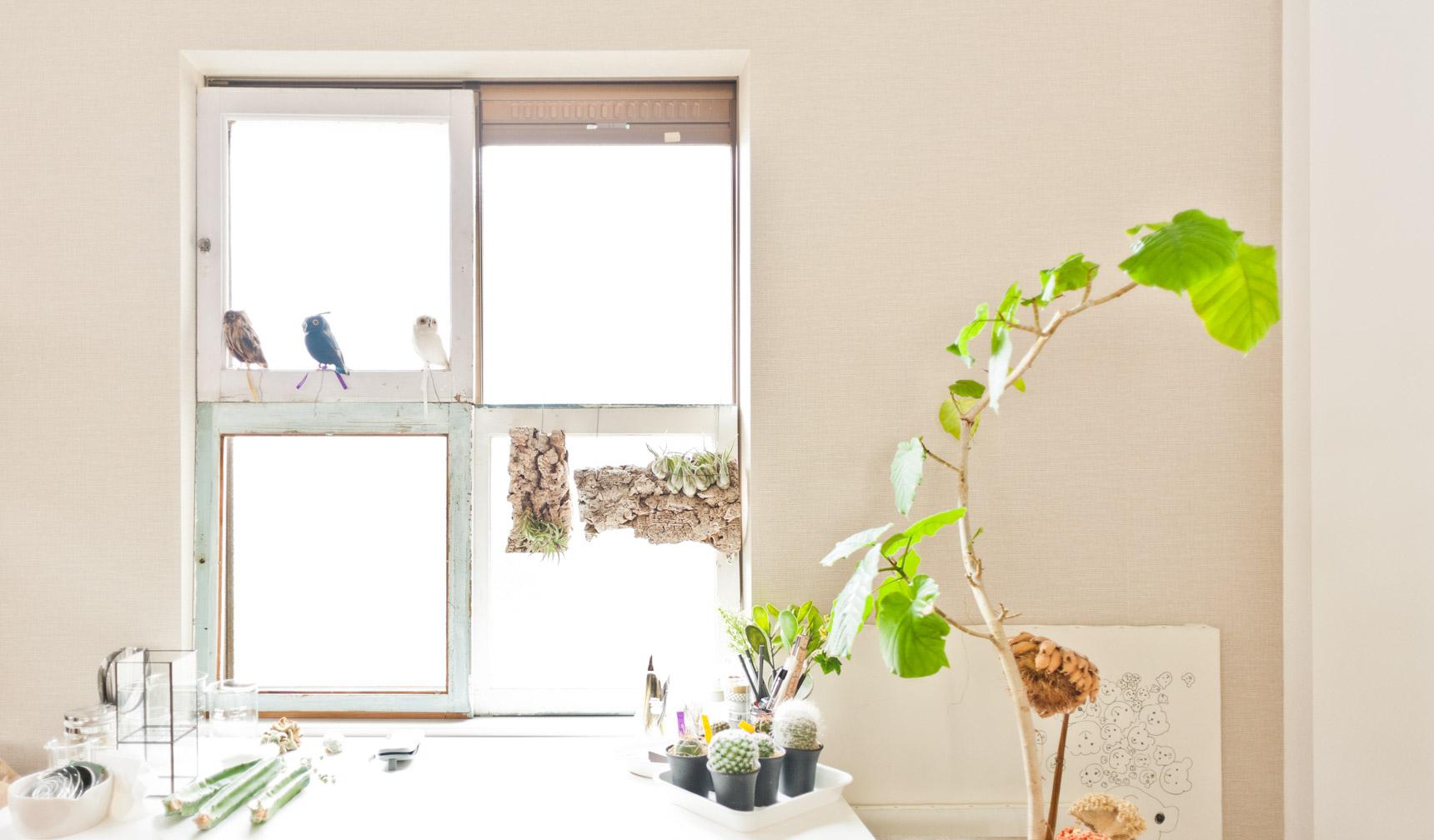 その窓もまたすてき。通常のサッシに木を貼ってる。これいいなあ。