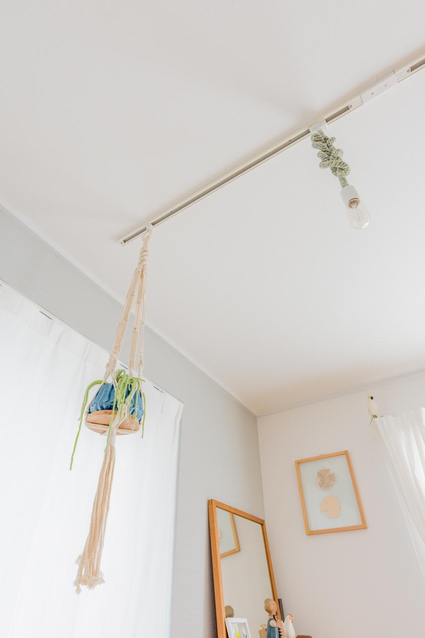 照明用のレールを利用したこの観葉植物のぶら下げ方、なるほど。いい。