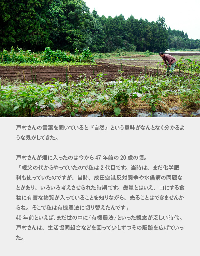 lovevegetables_sp5-16