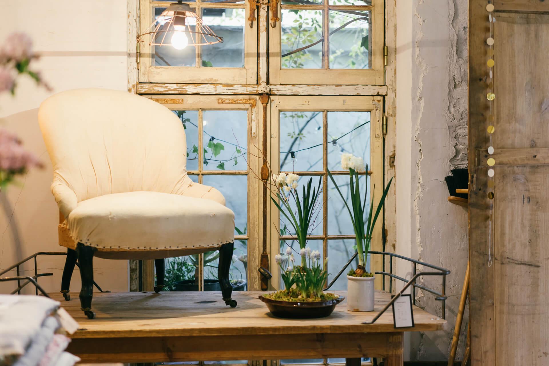 作業台として作られた大きな木のテーブルに並んだ植物。店内のドアや窓も、アンティークのものにあわせて作られています。ところどころ剥げたペンキがシャビーな雰囲気。
