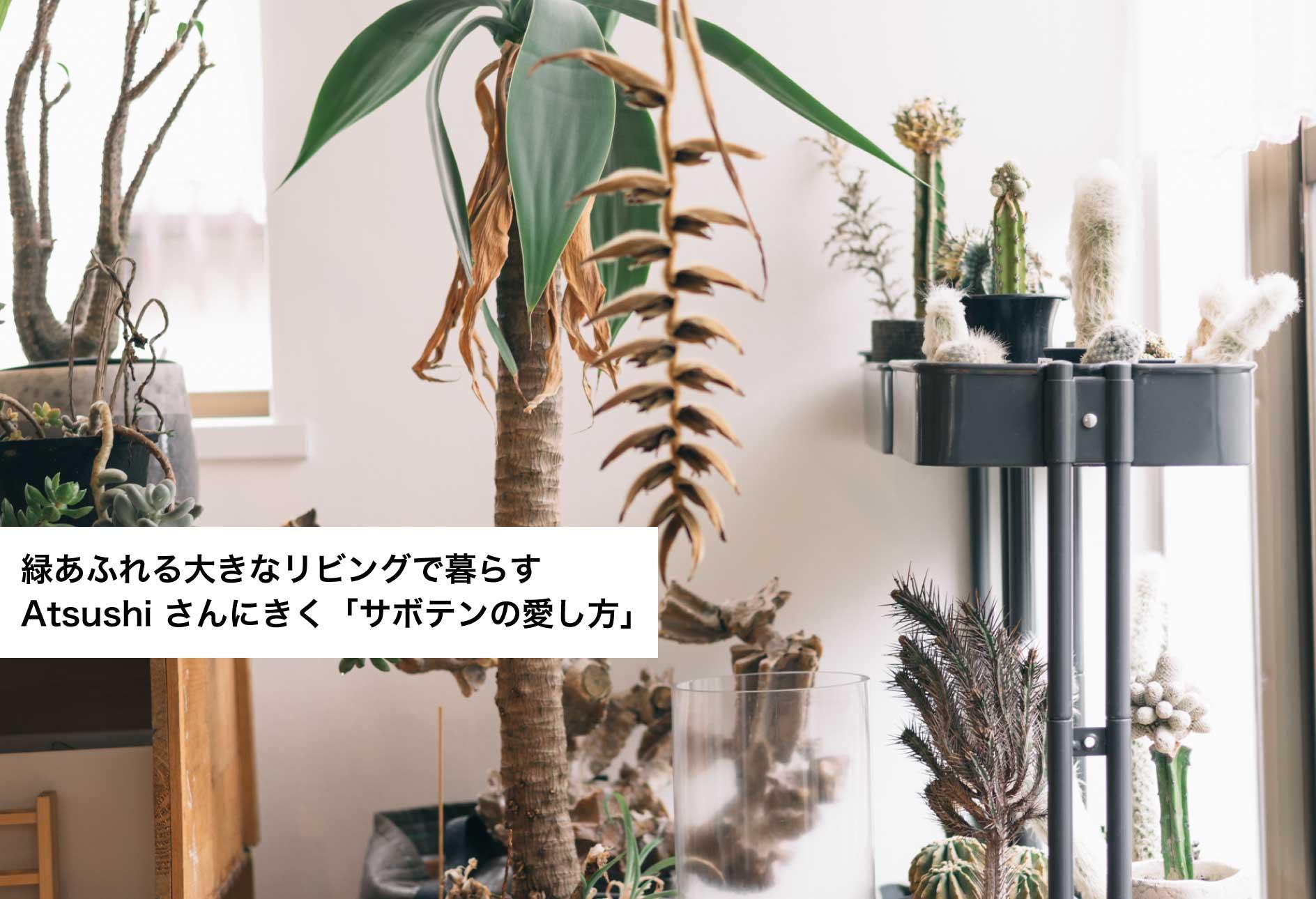 緑あふれる大きなリビングで暮らす Atsushi さんにきく「サボテンの愛し方」