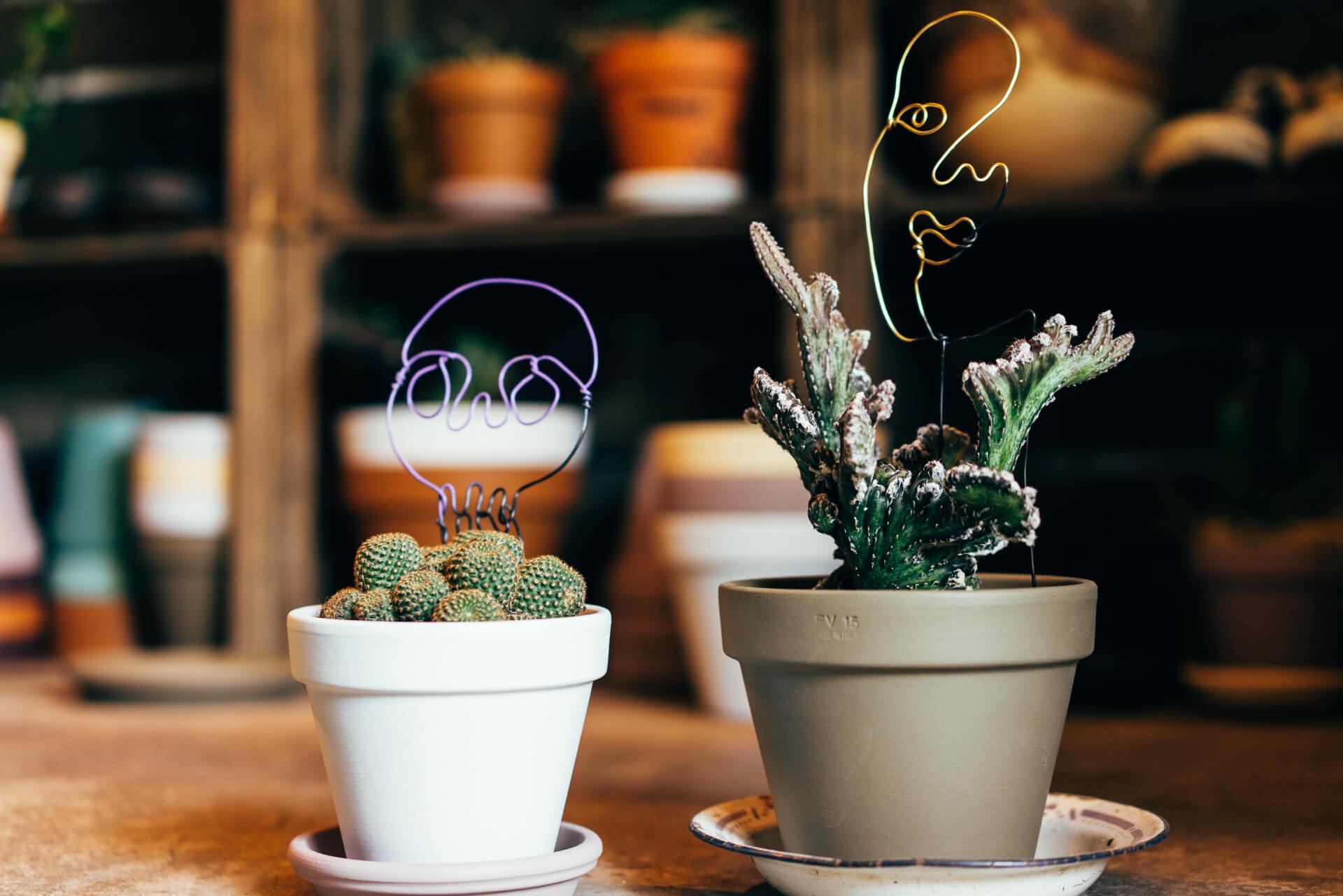 写真上/オリジナルのワイヤーアートとプランツ、鉢のセットは、色味や形のバランスが合うように組み合わせたもの(セットで左9,800円、右11,350円、プレートは別売)