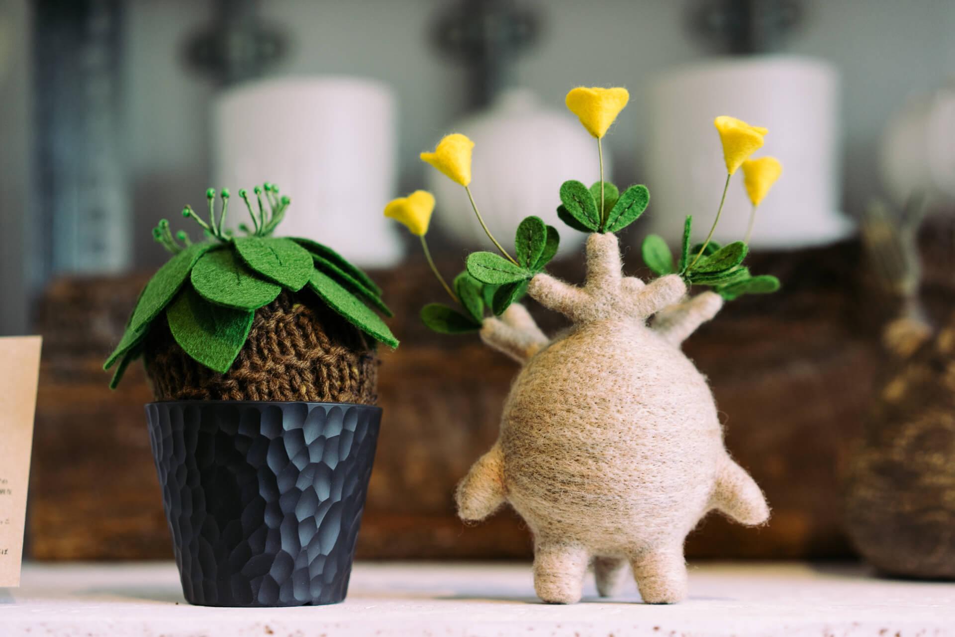 可愛らしい植物のぬいぐるみは、すぐに売り切れてしまうほどの人気商品。「植物の中には生育が難しいものもあるので、そういうものを無理して買うよりは、こういう楽しみ方もあるんですよ、というのを提案したくて」(左:8,900円(鉢を除く)、右:23,000円)