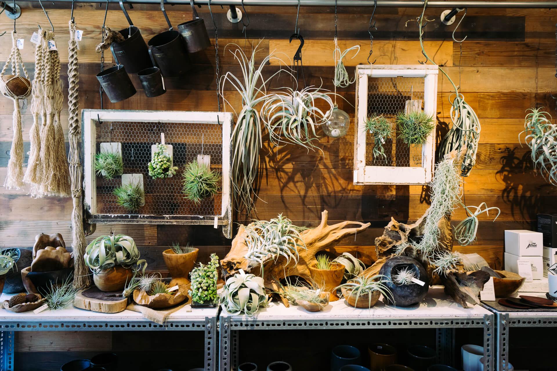 植木鉢以外にも、オリジナルの魅力的な商品がたくさんあるTOKY。じっくり見始めると、どれもこれも欲しくなってしまって大変です。