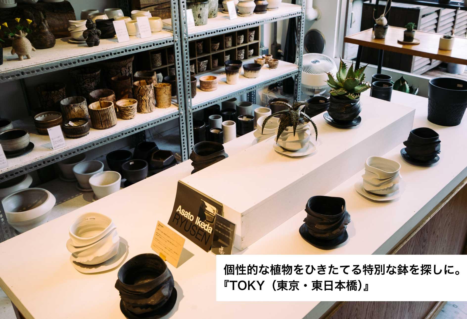 個性的な植物をひきたてる特別な鉢を探しに。『TOKY(東京・東日本橋)』