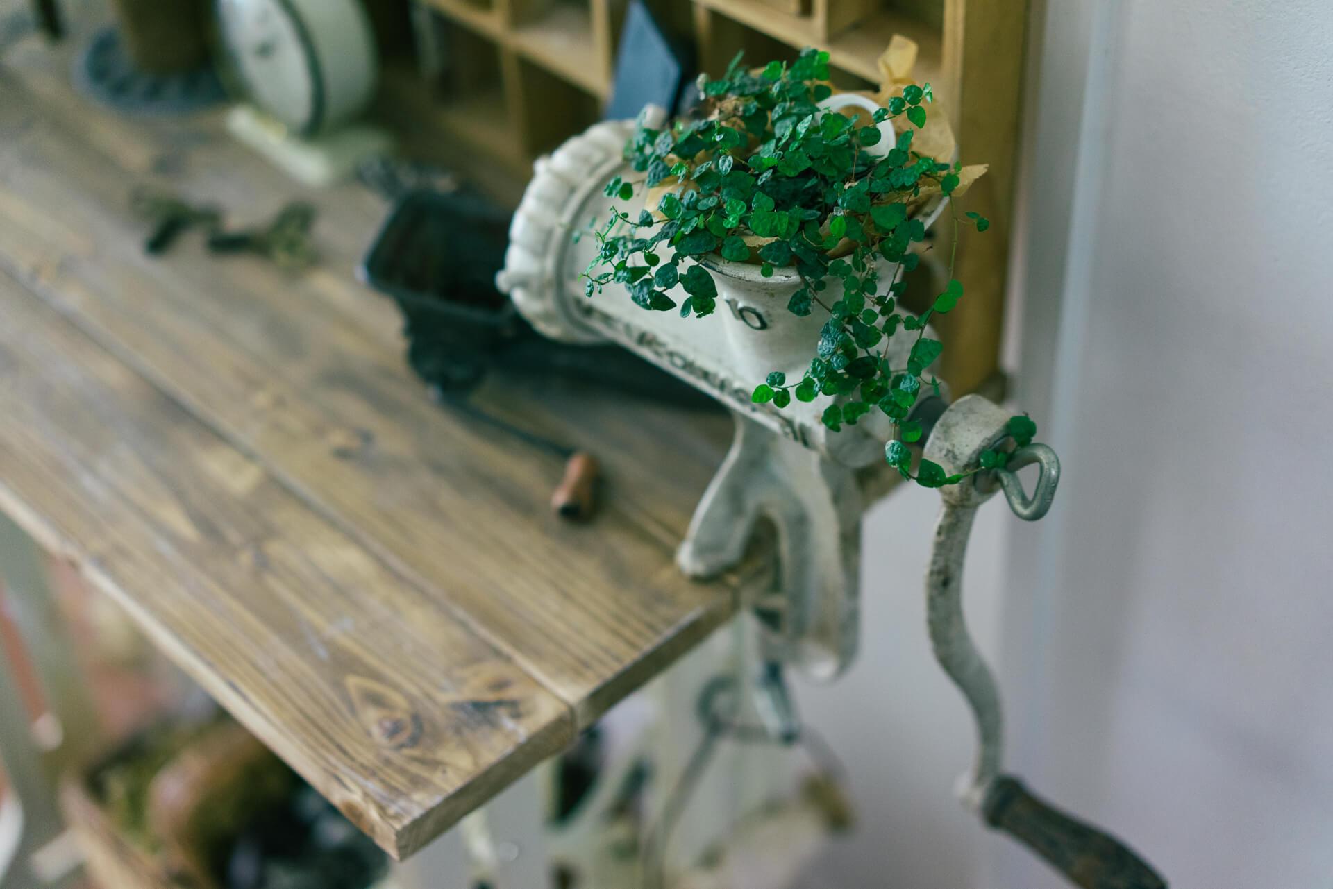 「やっと手に入れた」というお気に入りのミシン台にもグリーンをプラス。