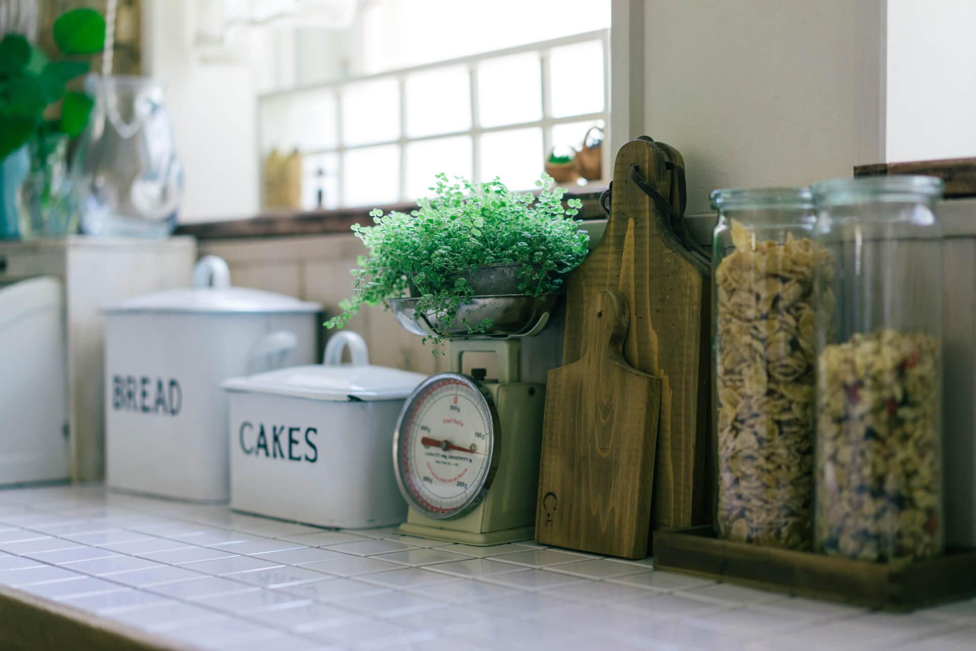 キッチンにも!ちょこんと緑があるだけで、料理も楽しみになりますね。