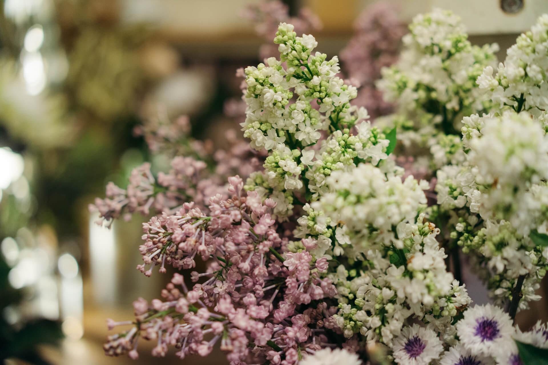 紫陽花や芍薬、ライラックなど、この季節のおすすめのお花も、大玉のものだったり、色合いが絶妙だったりのものが選ばれて店頭に並んでいます。