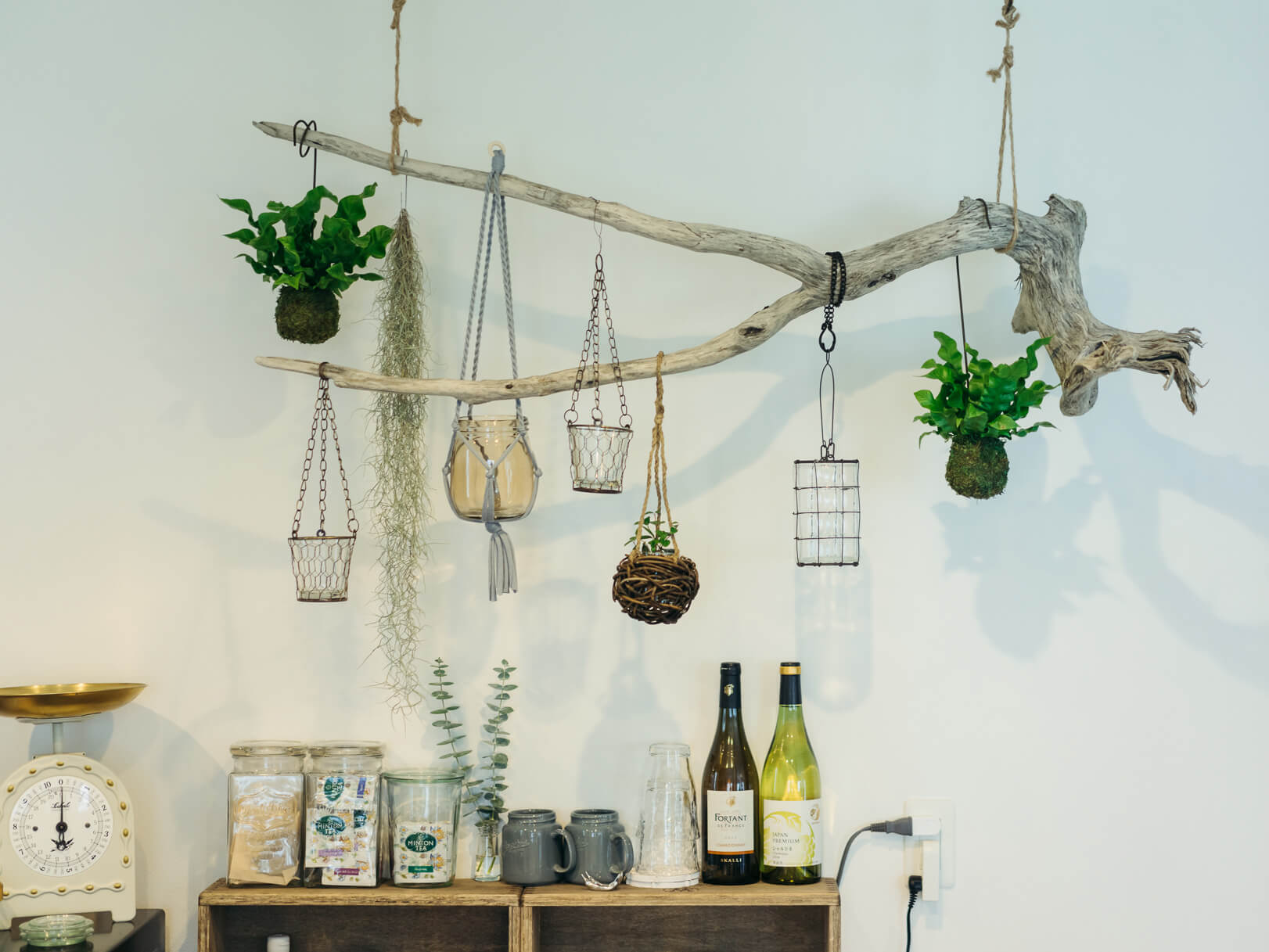 キッチンには、日陰にも強いタイプの植物を。流木と組み合わせたレイアウトが格好いい。