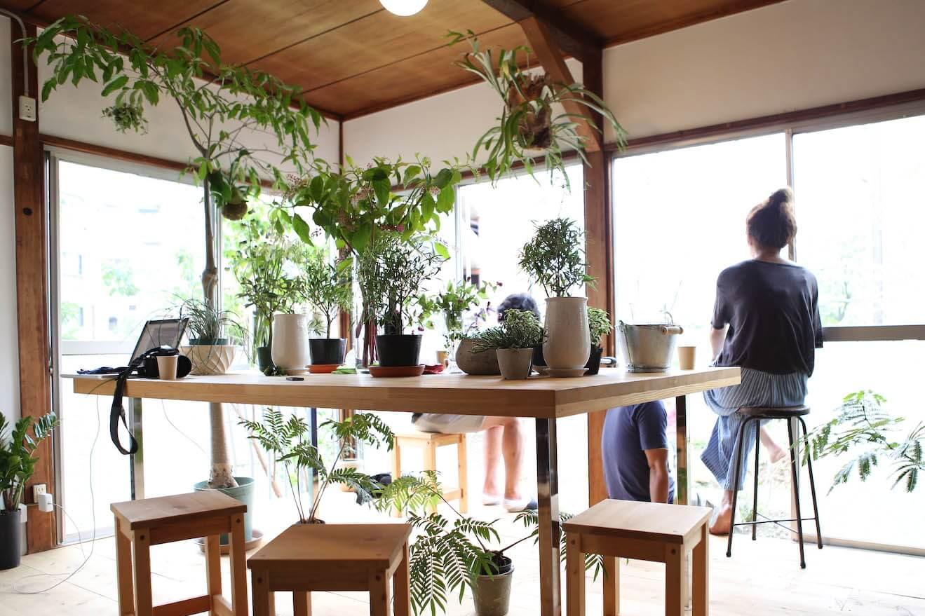 西新宿の花屋さん「ハナミドリ」と一緒に、植物を通じたワークショップのできるスペース「ハナと枝」が誕生しました。