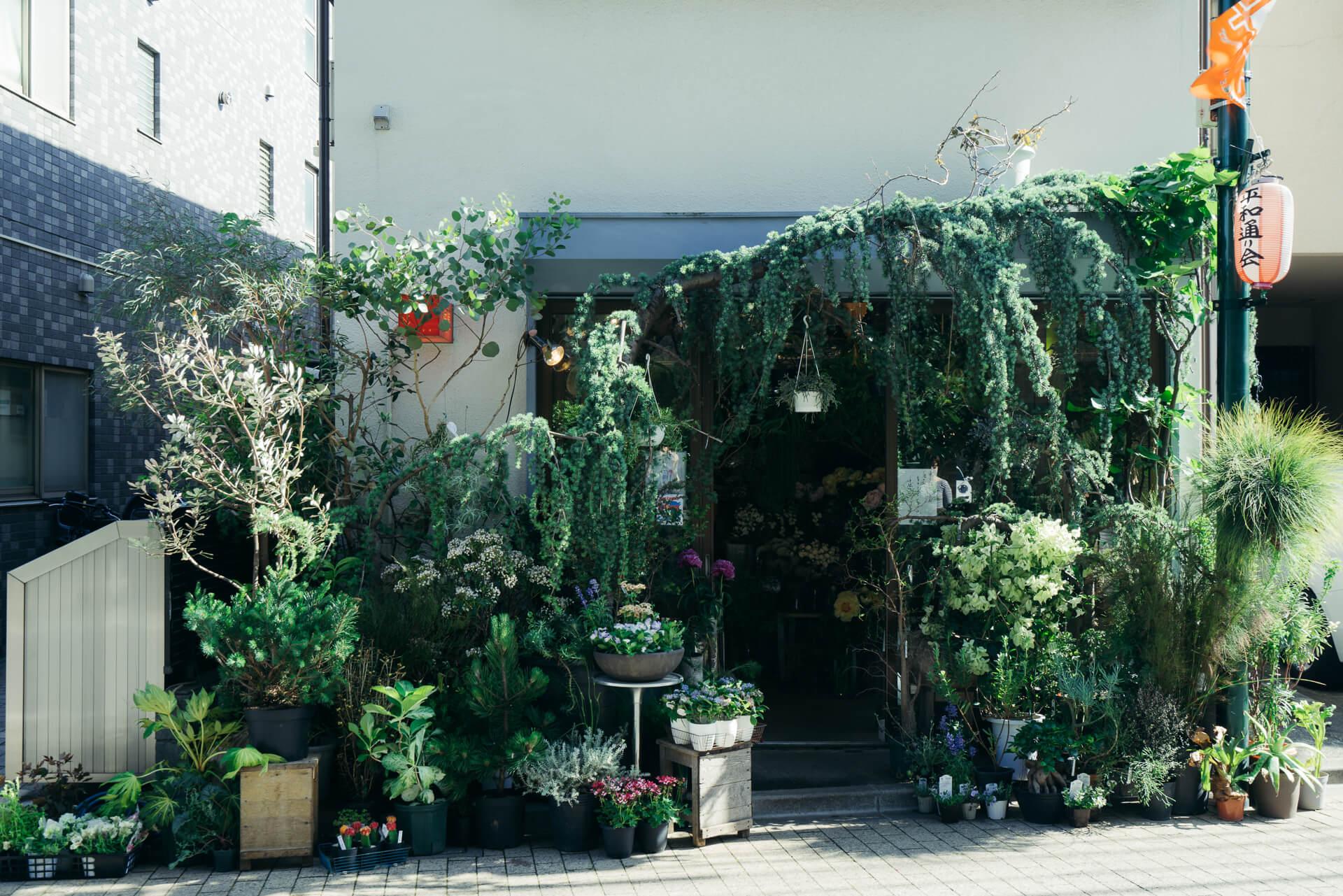 西荻窪の駅から線路沿いに少し歩いた先、大きな木々に囲まれたお店がありました。
