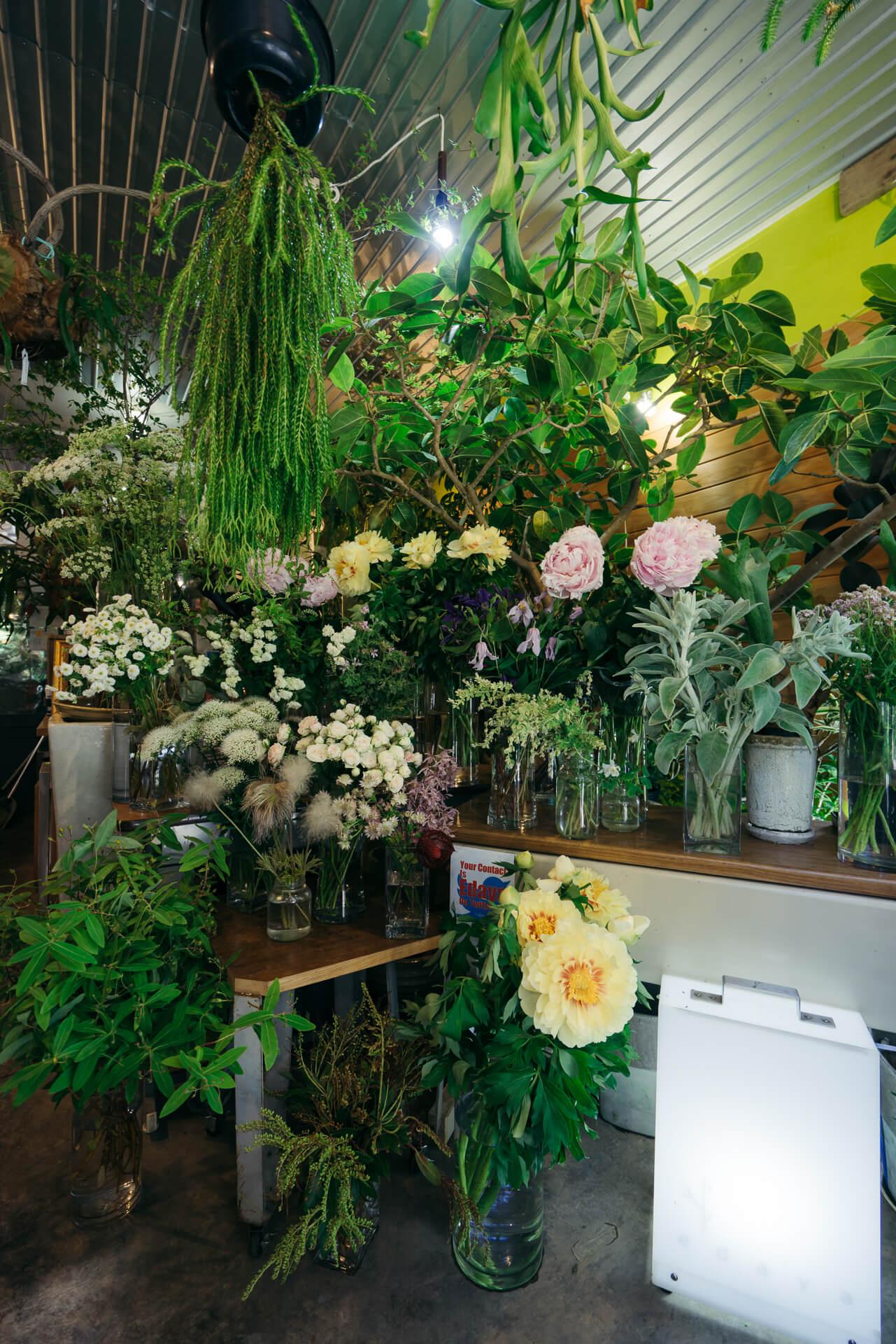 店内には、切り花のほか、かなり大きめの観葉植物、天井からつり下がったコウモリランなどが飾られ、ちょっと迫力ある空間です。