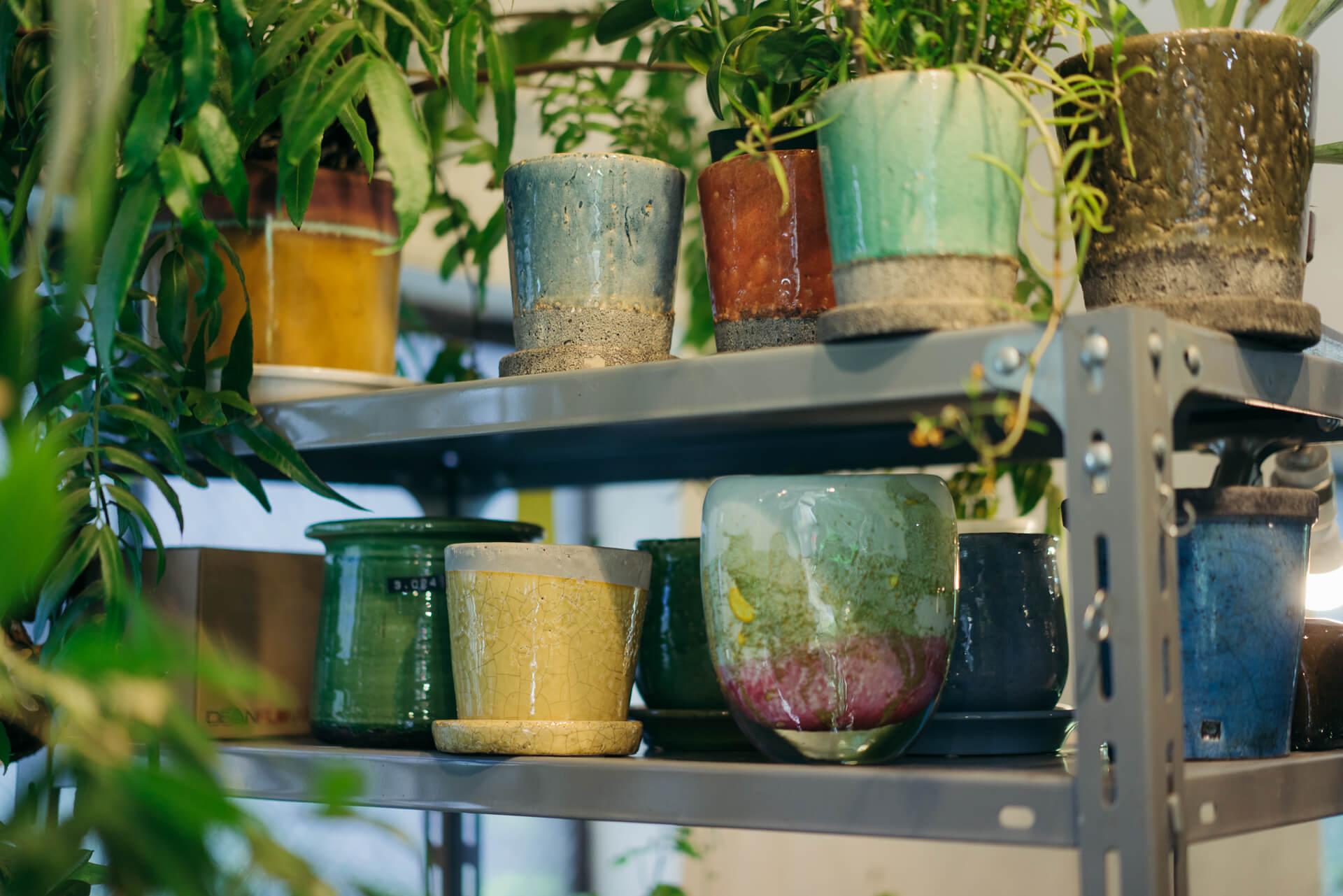 Henry Dean、DOMANIなどの、ちょっと個性的な鉢や鉢カバーも扱います。器に植え込んでいただくこともできるそう。