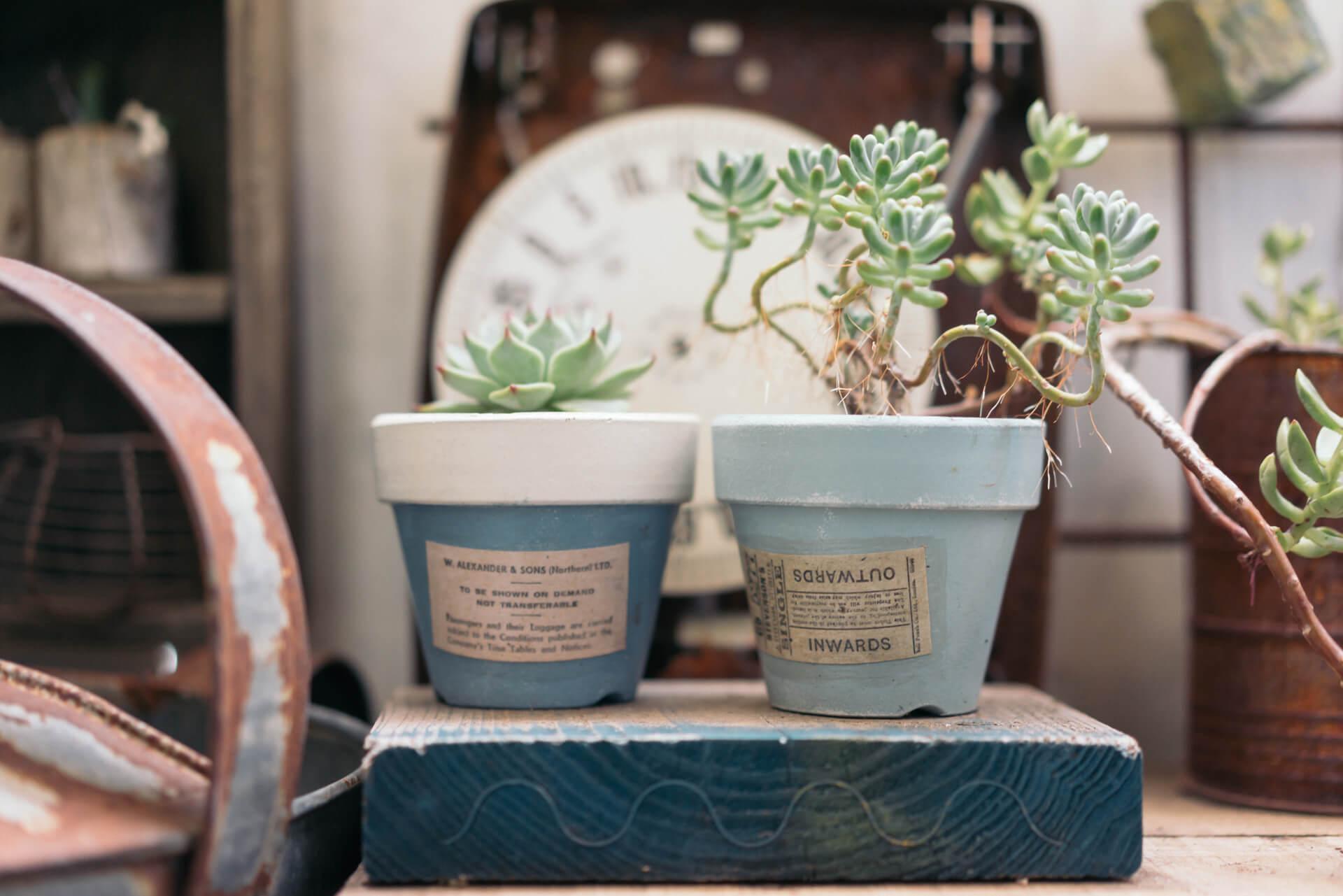 植木鉢はペイントし、ラベルを貼り付けて。