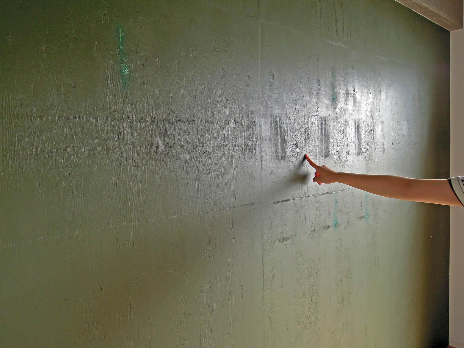 以前の住民がDIYで緑色に塗った壁。何かを留めた釘跡が見えます。