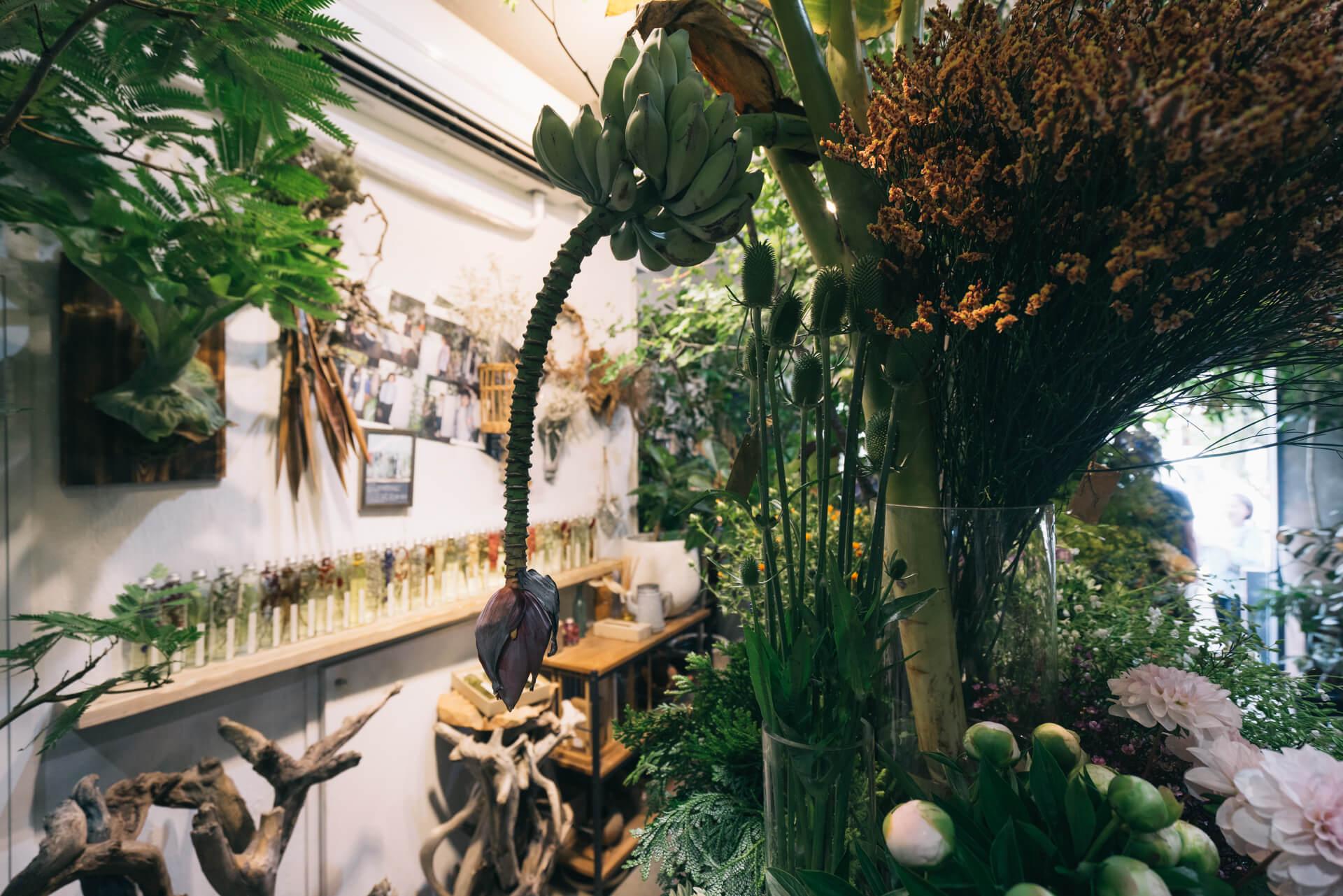 植物でわくわくする空間を作る。『LUFF』(東京・清澄白河)