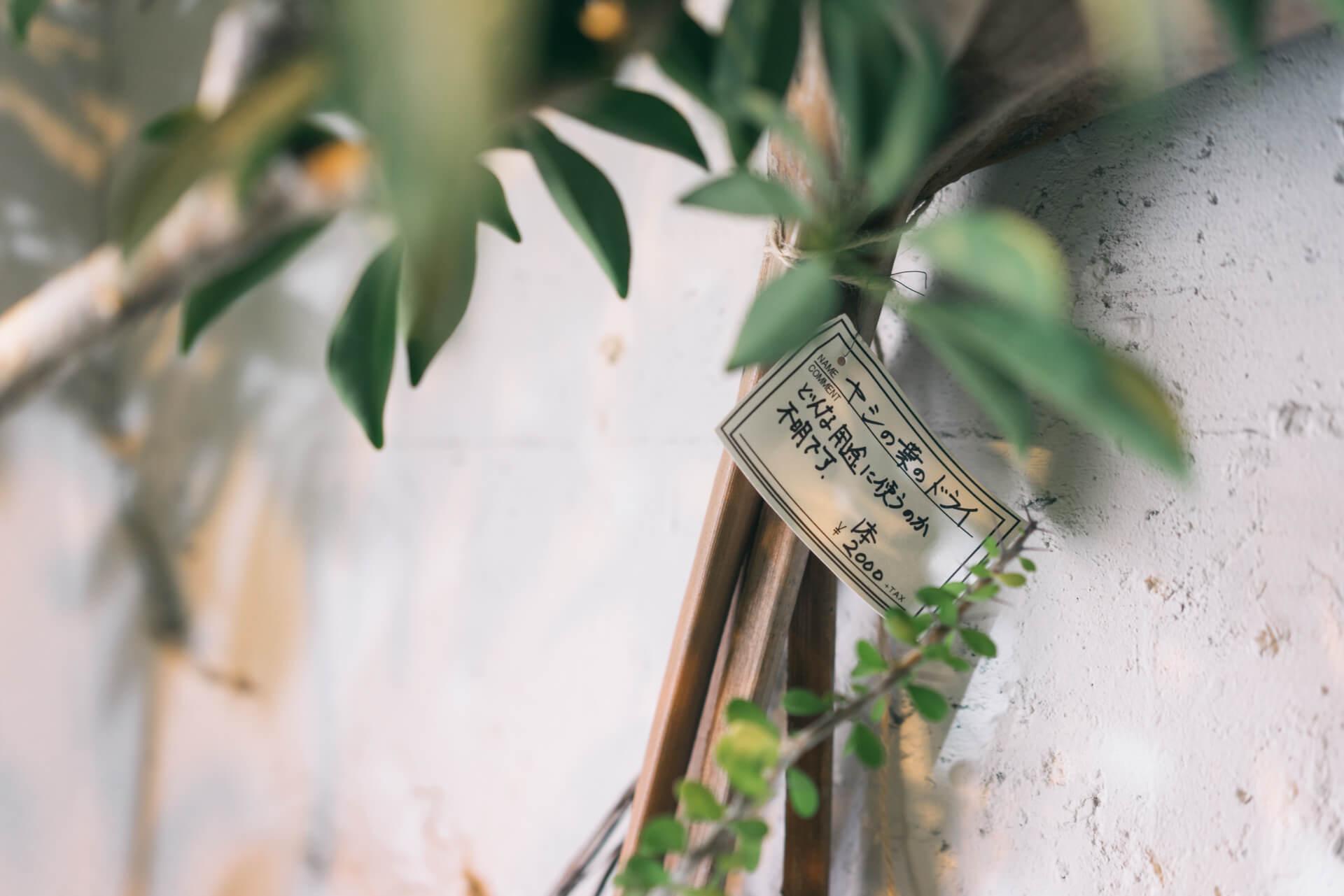 「どんな用途に使うのか不明です」と書かれて売られていた、ヤシの葉のドライ。