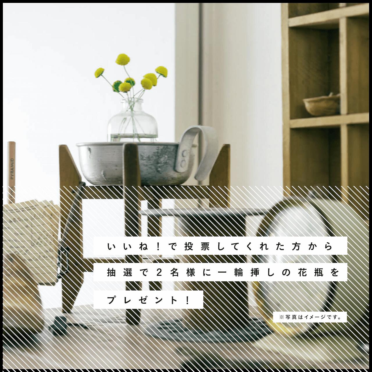 写真はkokkomacha さんのお部屋。goodroom journal 「緑のある暮らし Vol.5 小さなスペースに豊かな世界が広がる、kokkomachaさんのベランダガーデニング」より