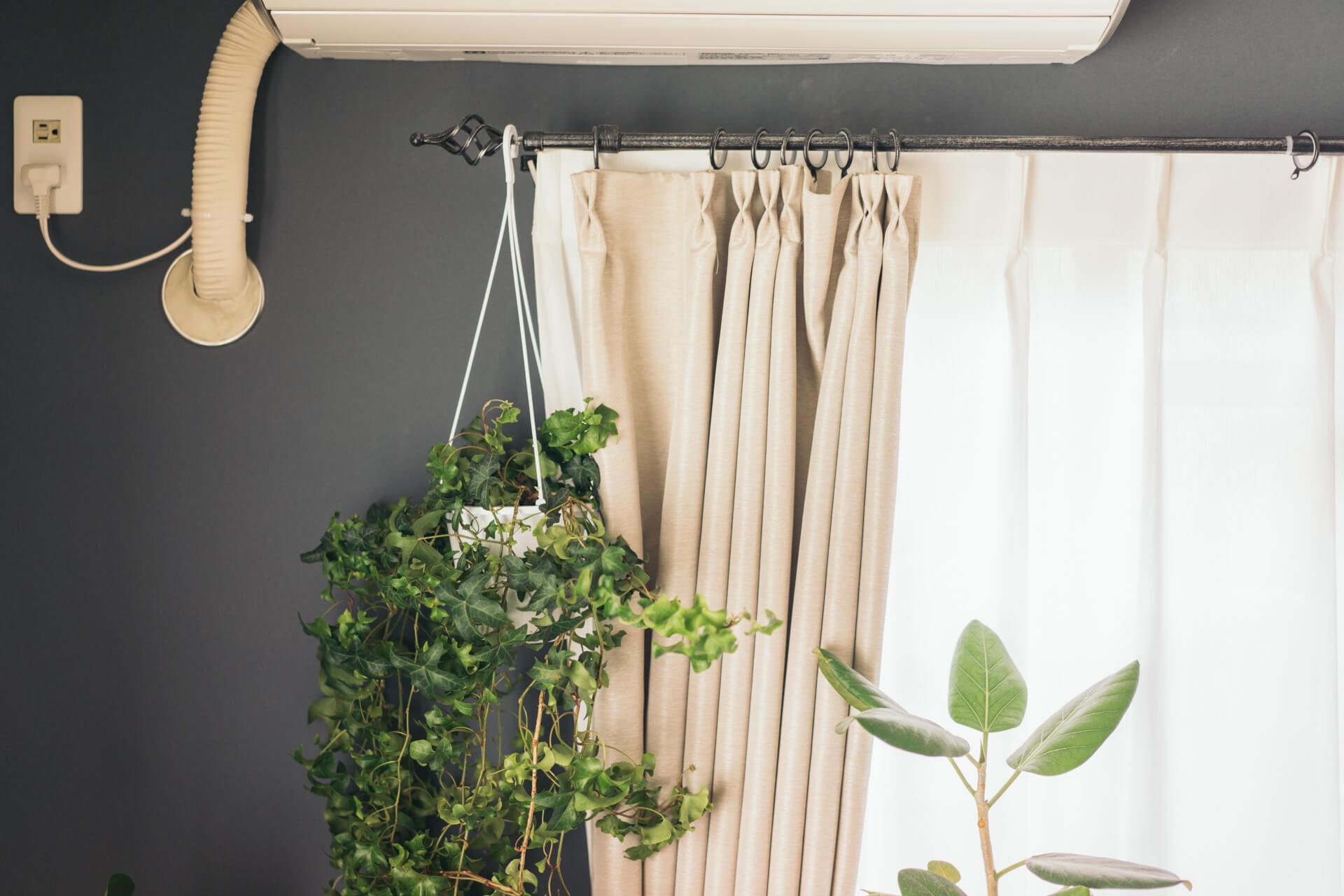 カーテンレールも、デザイン性のあるものをチョイス。グリーンをこうやって吊るすこともできます。