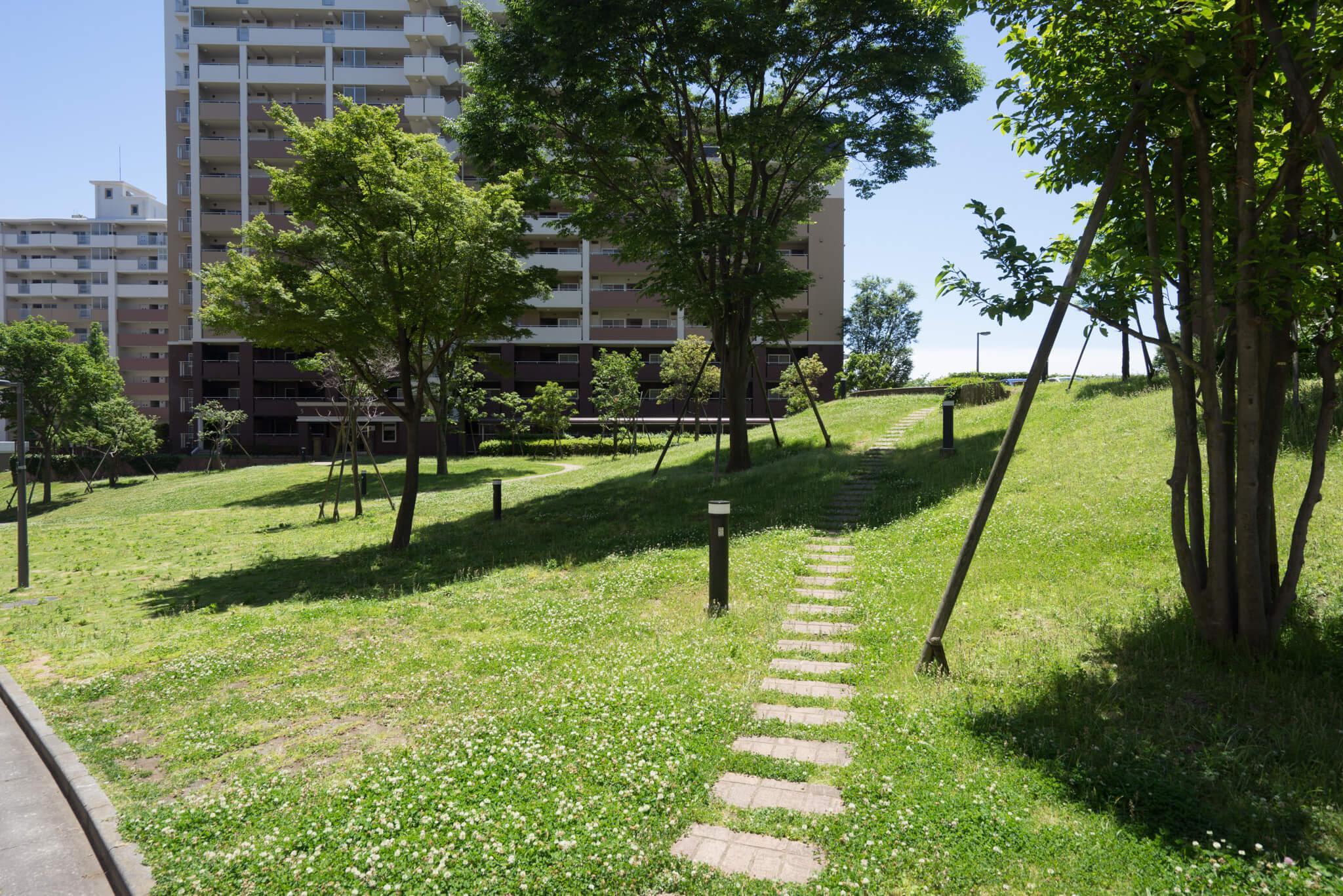 こちらの芝生の上で楽しくピクニックしている親子もいらっしゃいました