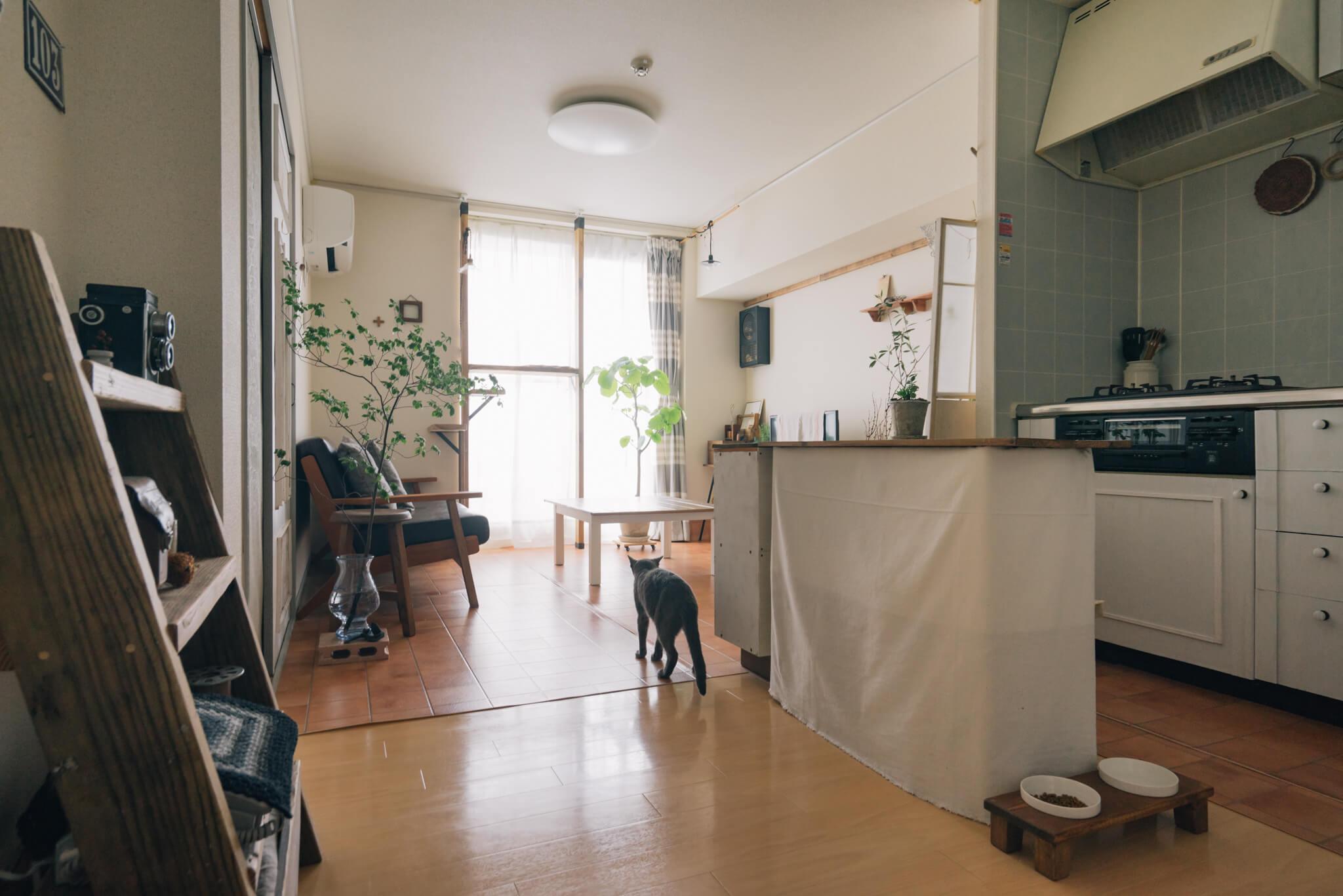 2LDKのアパートで娘さんと猫のプリン君と一緒に暮らしているさんしょくさん。ご機嫌のプリン君が陽当たりの良いリビングへ案内してくれました。