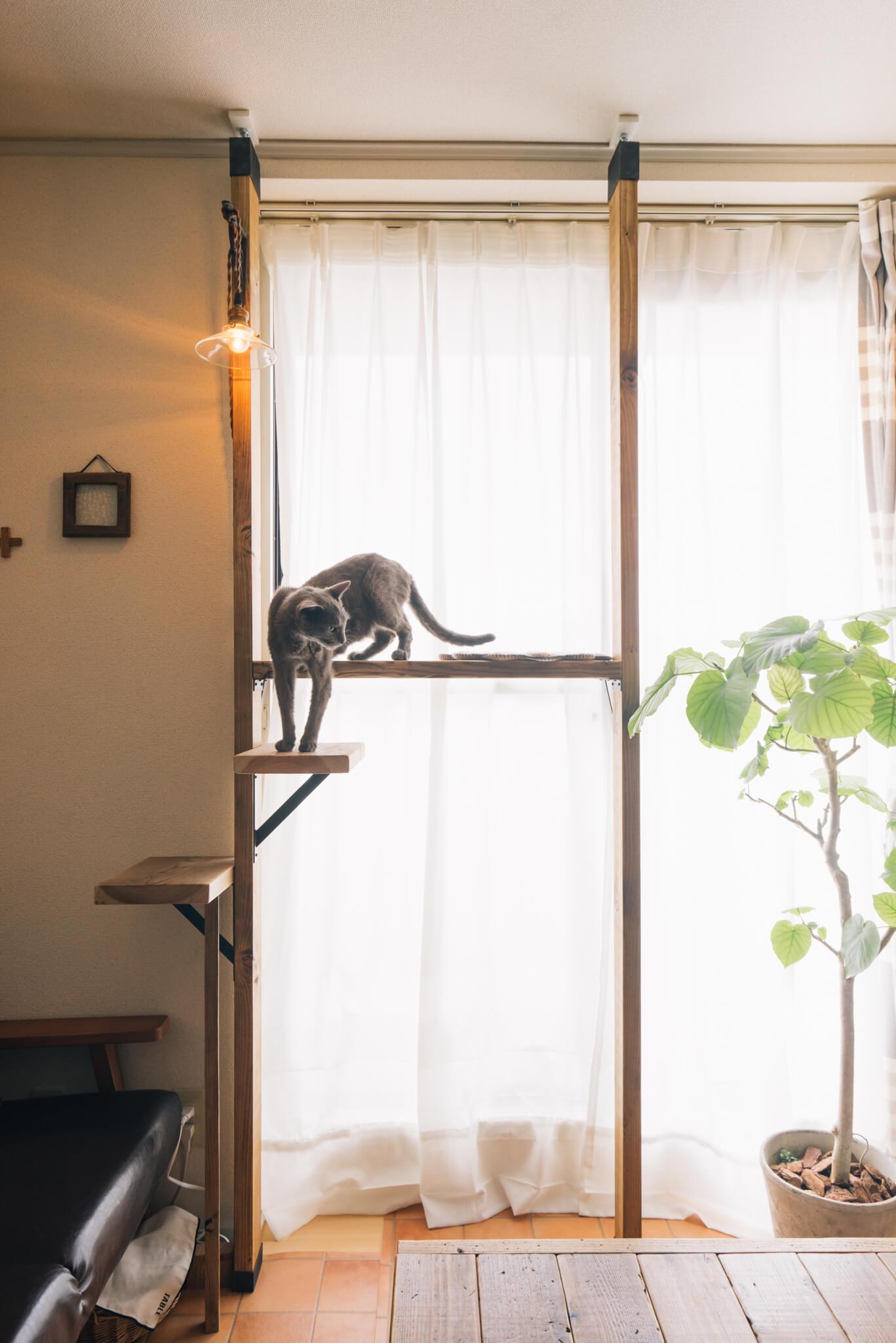 ホームセンターで手に入る2×4材と、突っ張るパーツを使って、窓際に簡単なキャットタワーを。特に猫を飼っていない私も、将来猫を飼うときにはぜひ真似したいと心にメモ。