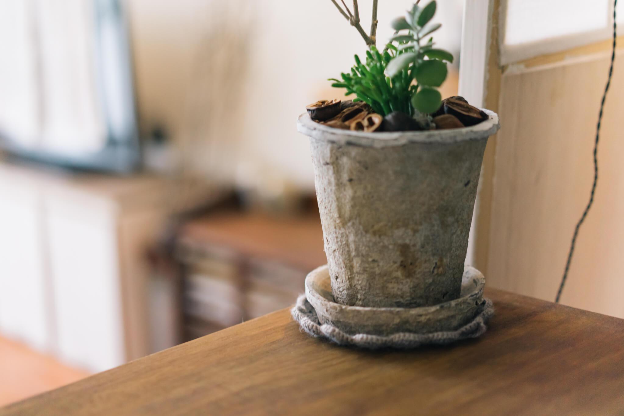 植木鉢の下にも、ぴったりサイズの敷物が!