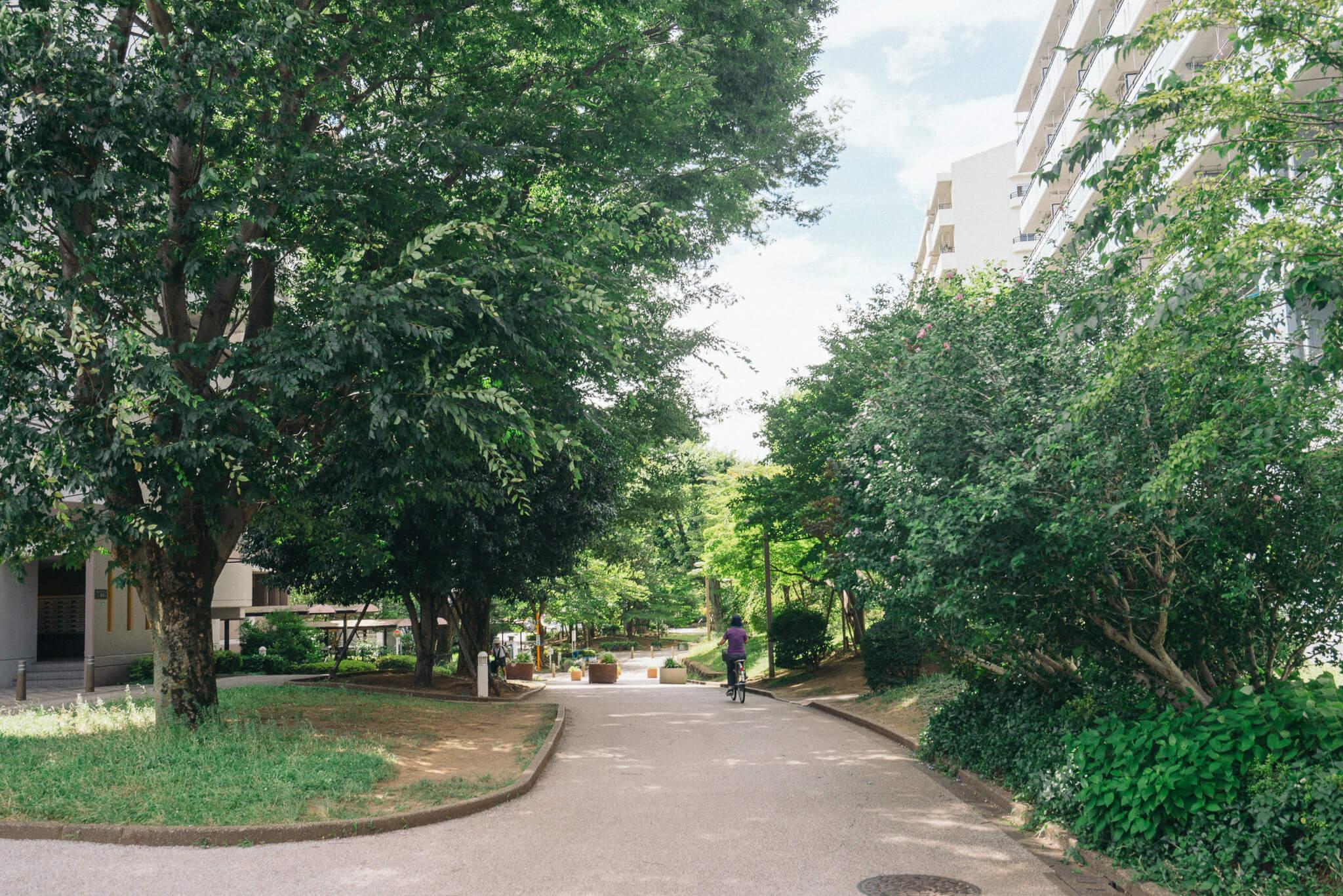 緑町住宅、武蔵野住宅、2つあるバス停を降りると、すぐ武蔵野緑町パークタウンの入り口。敷地内に入ると木々が豊かに茂る気持ちのよい緑道が続きます。