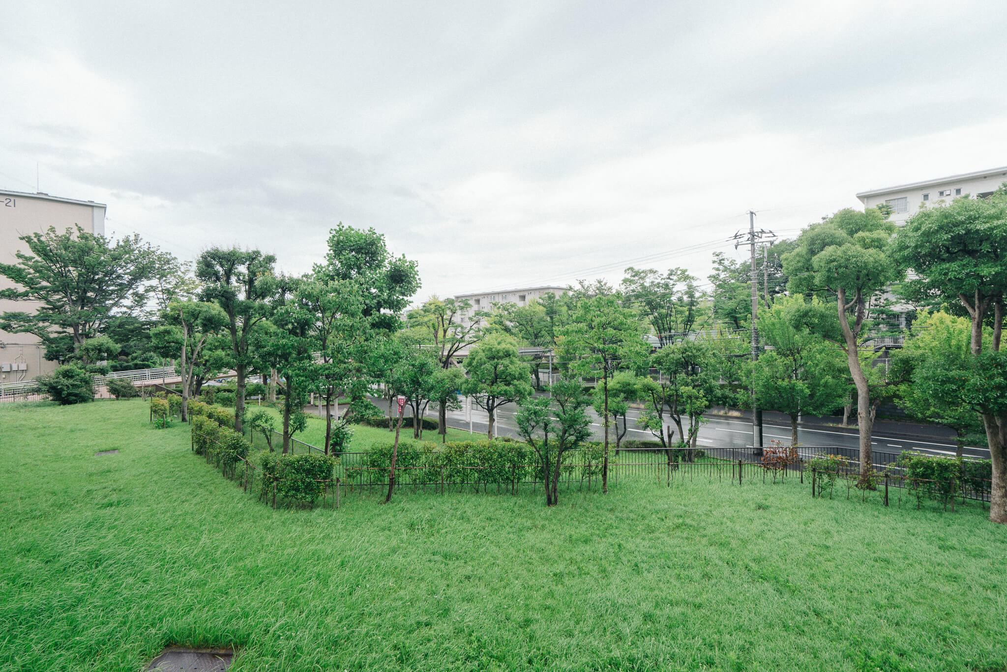 住棟によっては、リビングの目の前にこんな風に芝生の広場が広がるお部屋も。気持ちが自然とくつろぎますね。(写真は2-17号棟からの眺望)