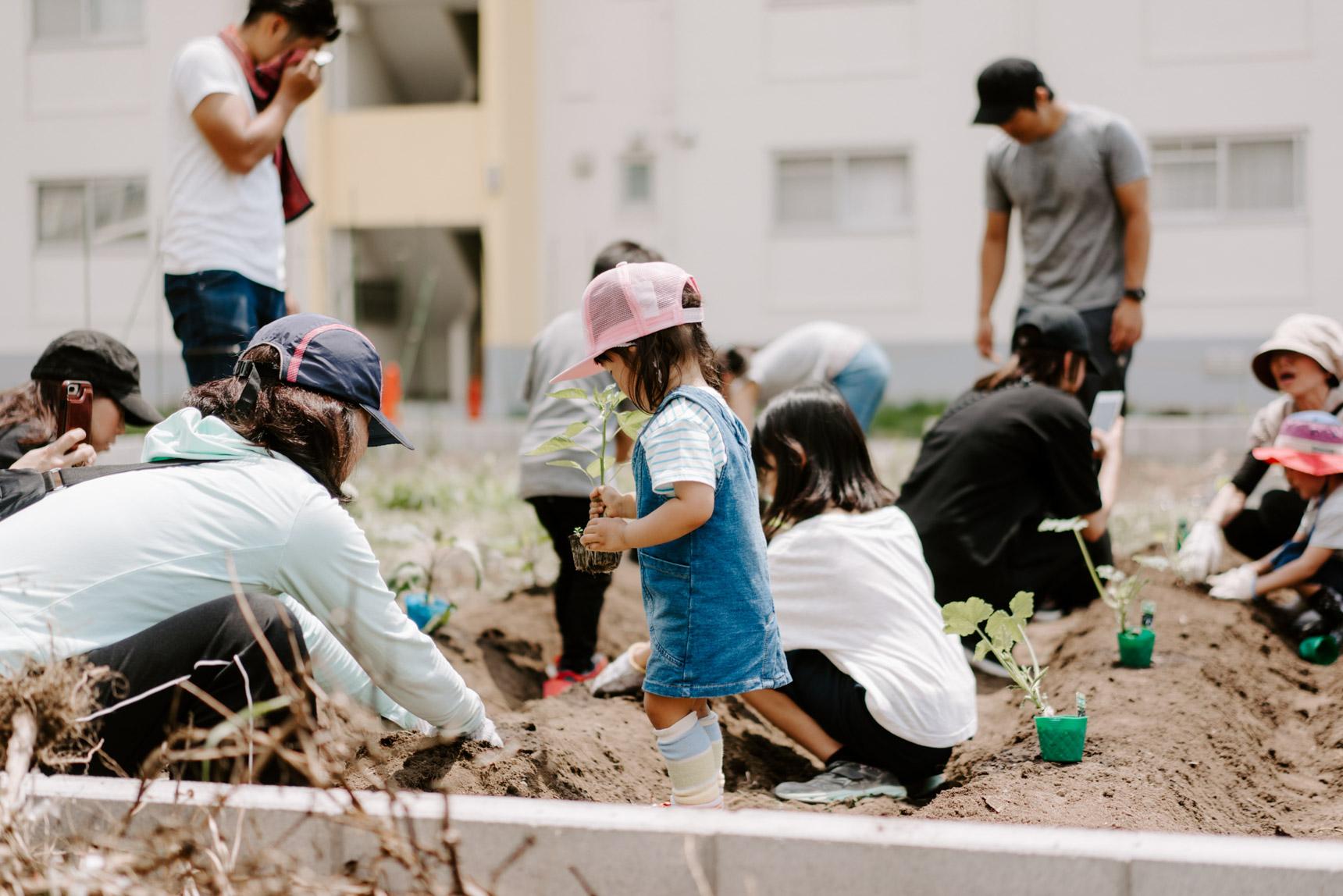 「農業」がつなげるコミュニティのある暮らし。「ハラッパ団地」の収穫祭&苗植え会に行ってきました