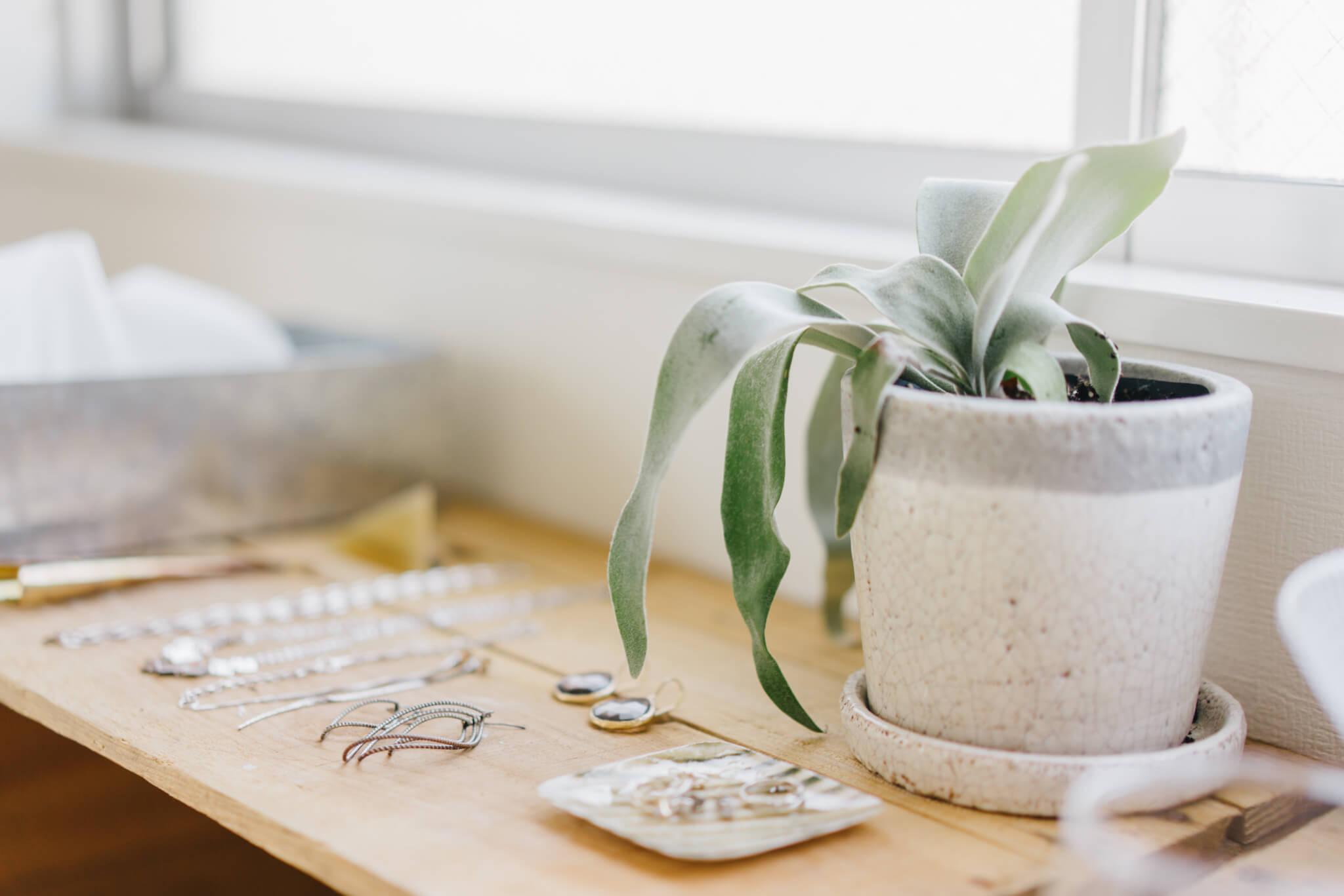 日用品の中に植物をうまく取り入れるのもポイント。雰囲気のあう陶器の鉢に植え替えています。