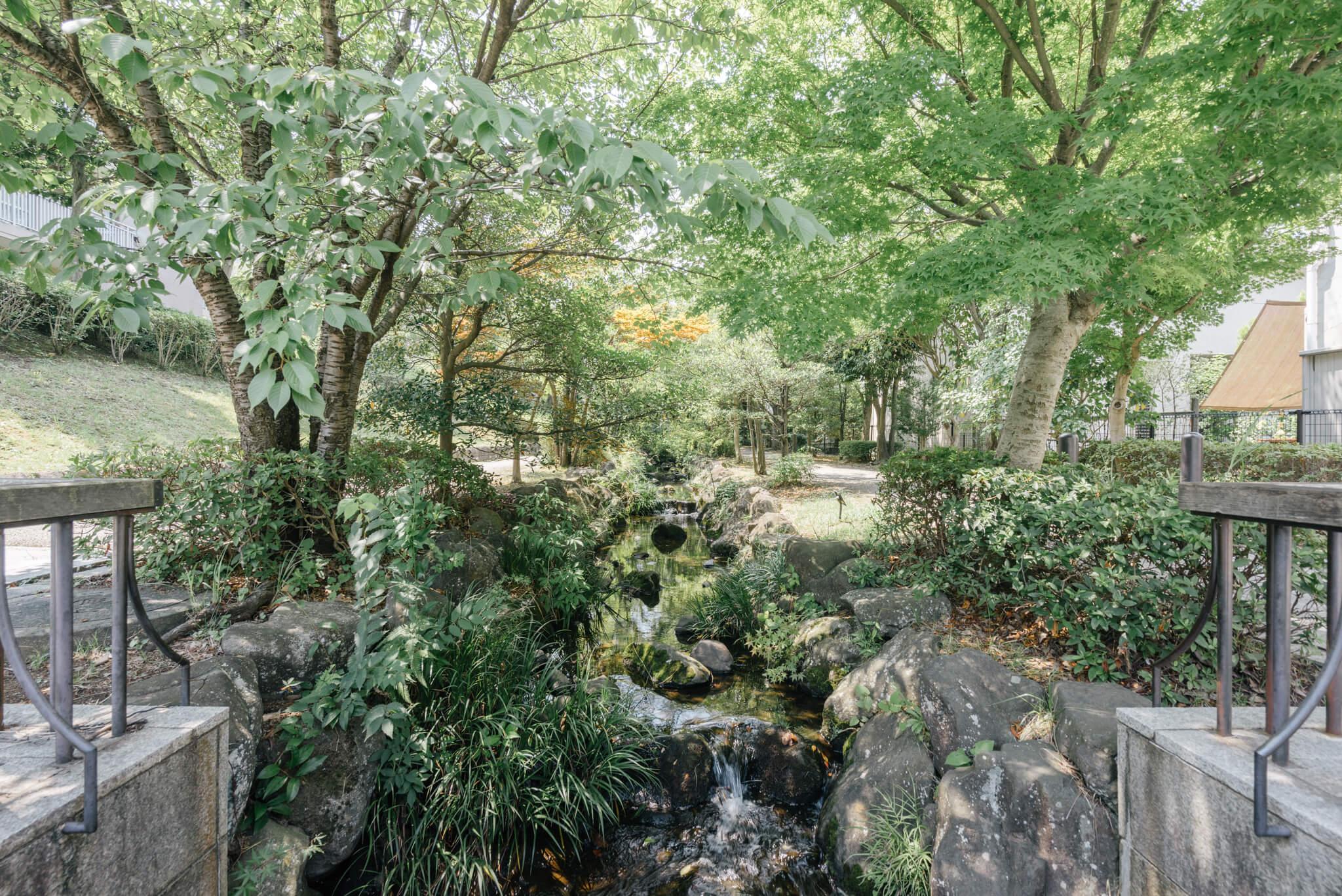 住宅街の中に続く、「せせらぎ緑道」。里山の小川の雰囲気を残す、癒しスポット。