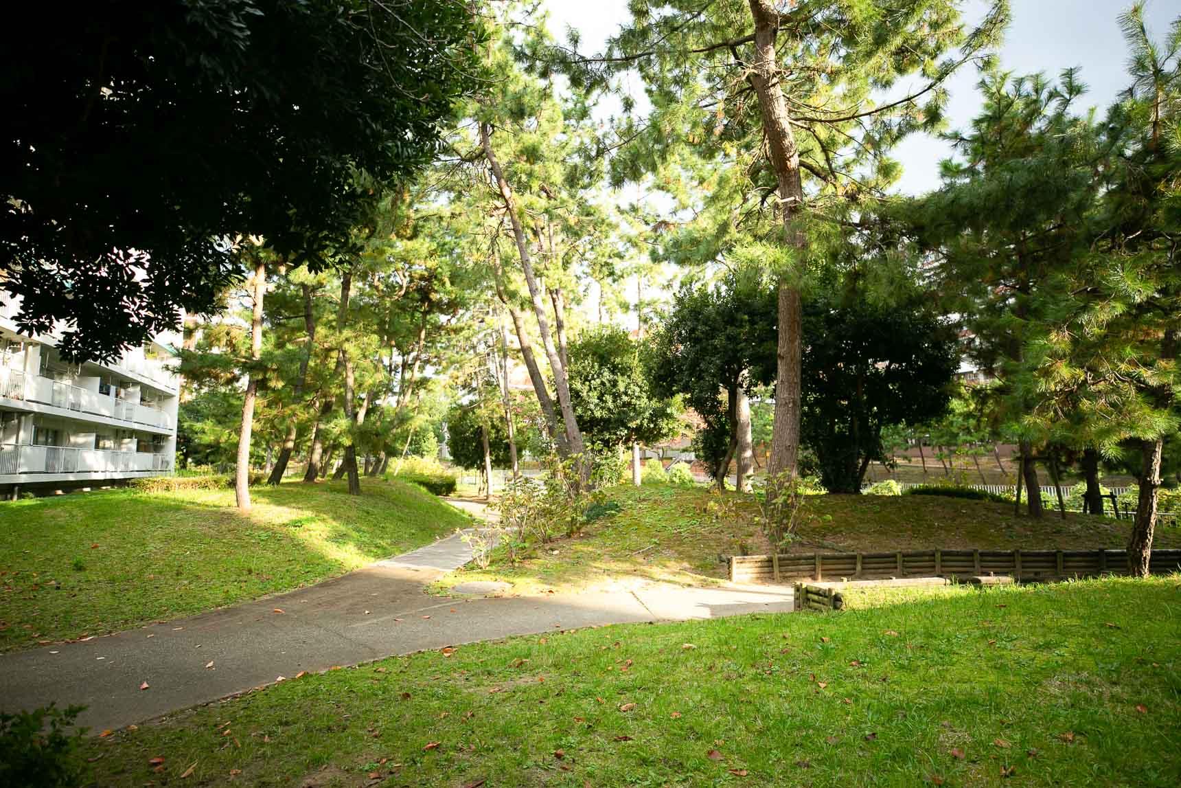 団地内の木々も大きく育っていて、そこかしこに学校帰りの子どもたちの遊ぶ声が響く広場があります。