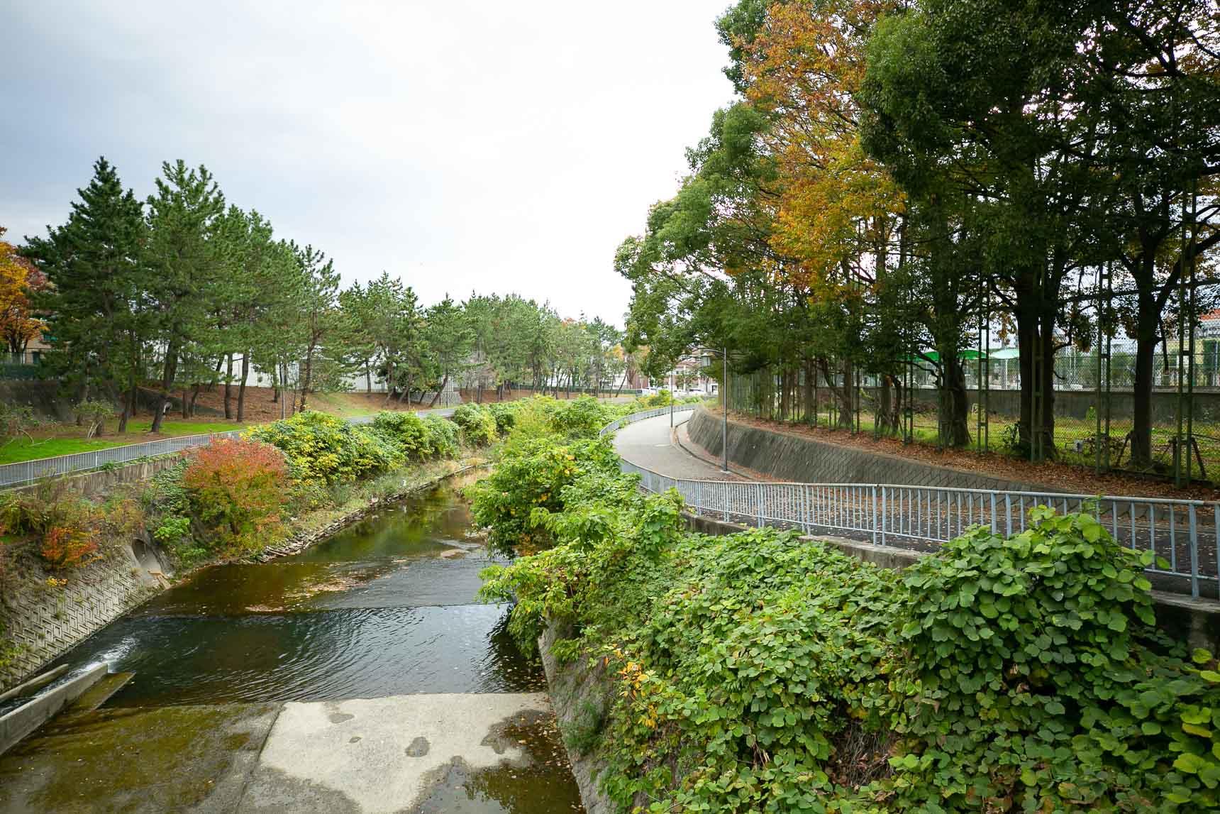 千里川に沿って遊歩道が整備されていて、自然を身近に感じられるとても気持ち良いスポットに。野鳥も訪れるほど綺麗な川です。これは毎日の散歩が日課になりそう。