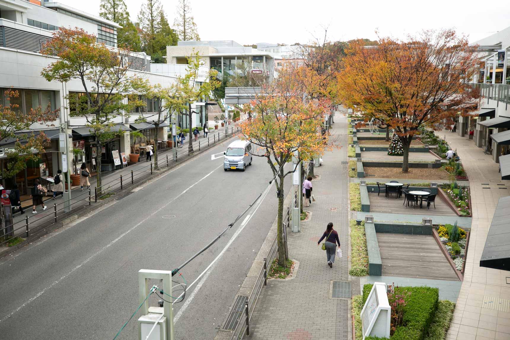 駅から、星ヶ丘テラスの間の並木道を抜けて住宅街へと進みます。
