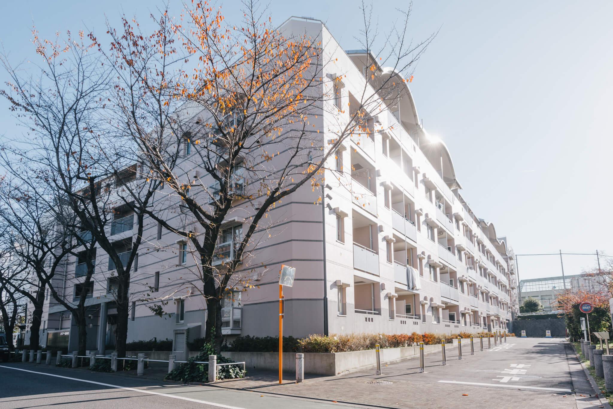 こちらが、スクエアー世田谷桜丘の建物。