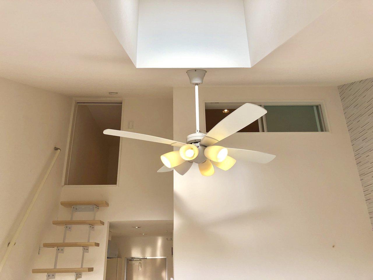 天井の高いお部屋って、空間が広く感じられておすすめです。こちらのお部屋は、高い天井に天窓&ロフト付き。