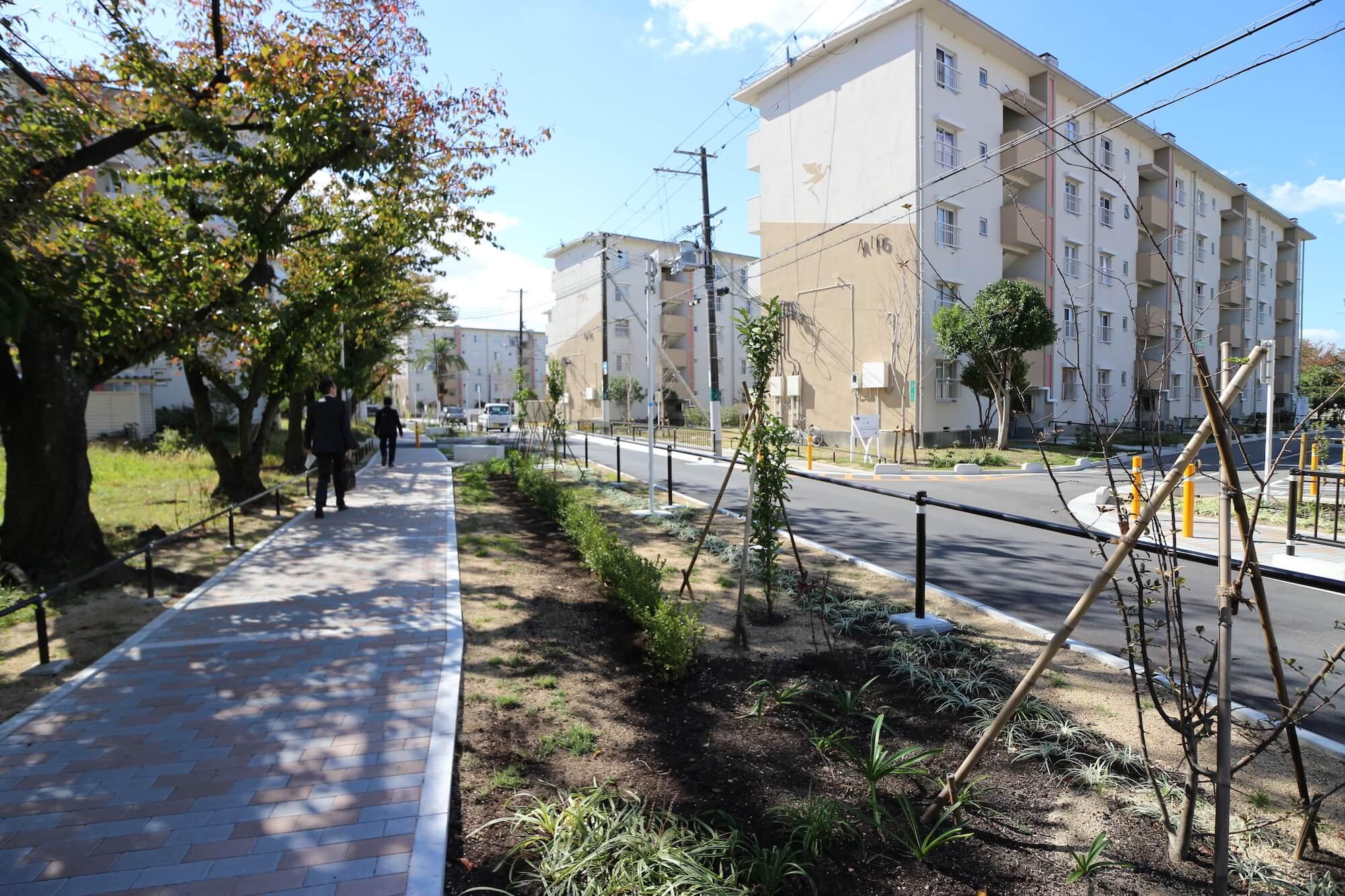 A棟エリアに26棟、B棟エリアに16棟が並ぶ、ビッグな団地。A棟エリアのゾーンは、歩道も新しく整備されています。「最近、アプローチや広場もリニューアルされて、雰囲気が良くなりました」と松尾さん。