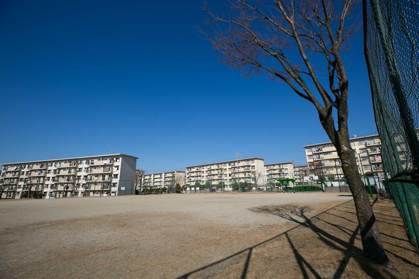 大きな運動広場もありました。広い……!