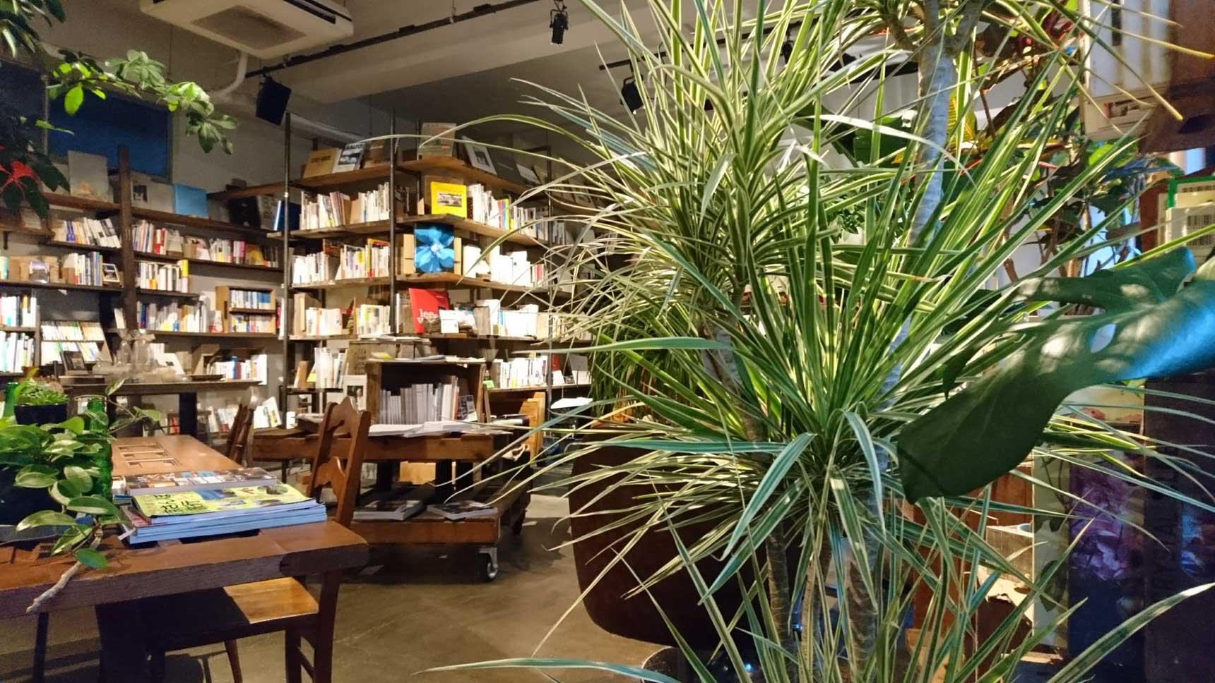 本の空間、植物の空間と分かれているのではなく、渾然一体となった空間がすごく魅力的です。