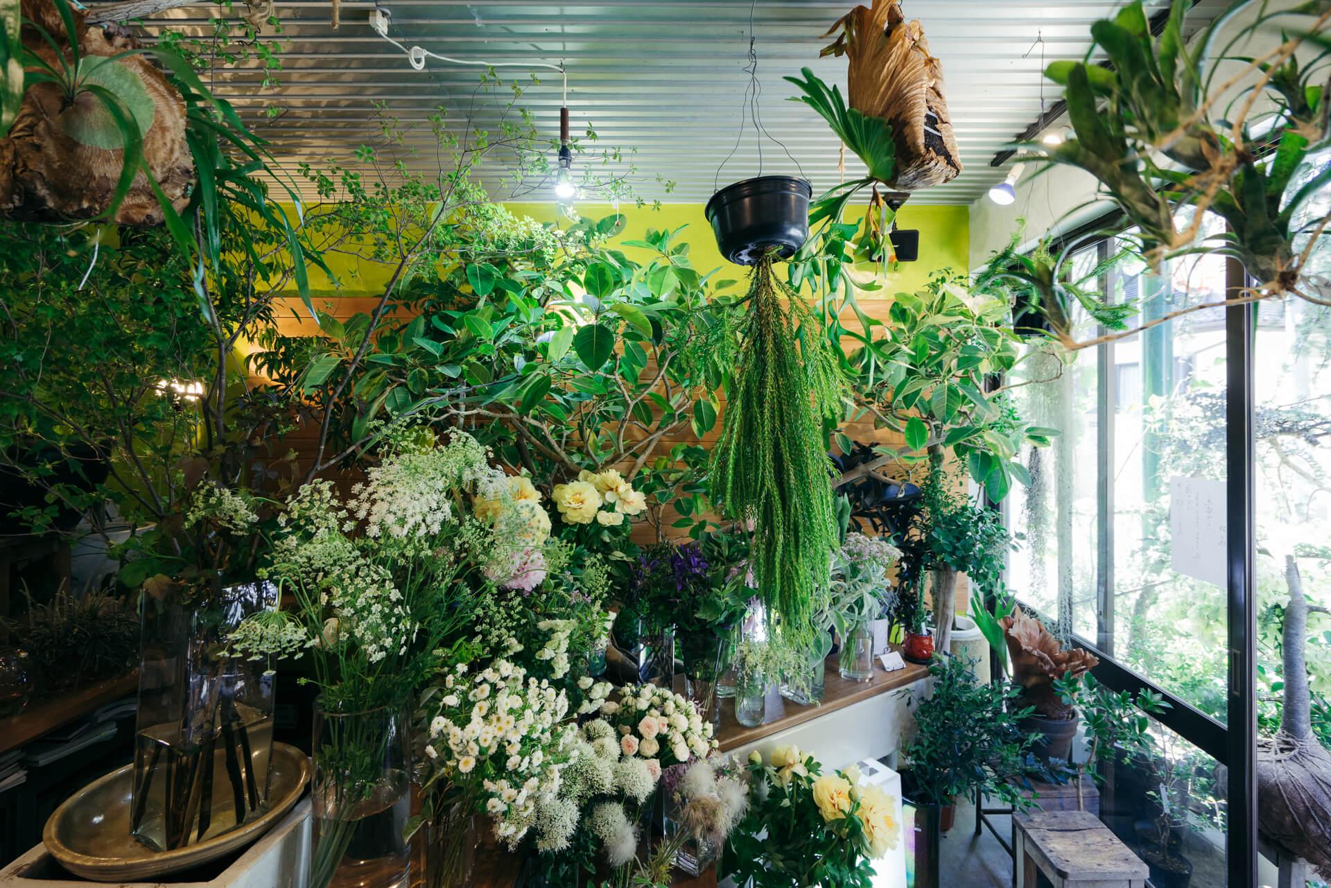 一番人気は西荻窪。個性的なこだわりのお店が多いことが、暮らし好きスタッフのハートを掴んで離さない様子。(暮らしに寄り添う植物を探して『枝屋(東京・西荻窪)』)