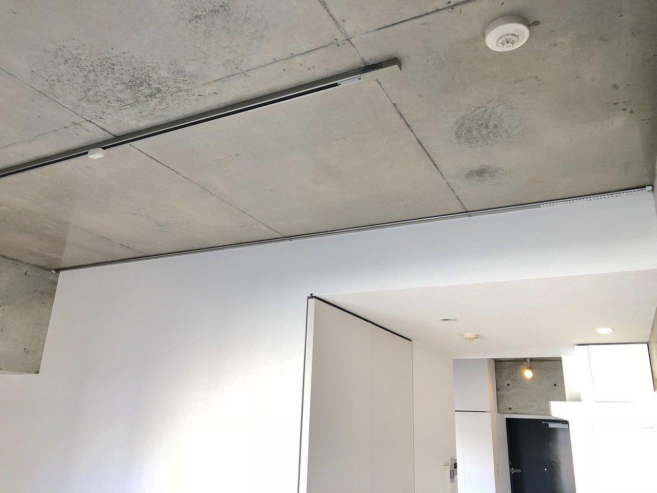 天井はコンクリート打ちっ放し。ライティングレールや、間仕切りにも活用できるカーテンレールなど、嬉しい配慮もあります。