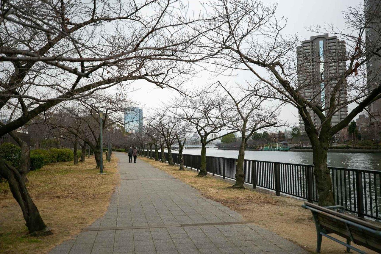 こちらは天神橋筋六丁目駅から徒歩8分の場所に位置する物件。近くには大川が流れ、春には桜、夏には花火が楽しめます。側には川が流れていて気持ちの良い、リバーサイド暮らしができるにも関わらず、阪急千里線、Osaka Metro谷町線、堺筋線の3沿線が使えてかなり便利な場所なんです。梅田からバスでもアクセスでき、自転車で通勤している人も多いエリア。毎日の通勤も、休みの日も、アクティブに動けそうですね。