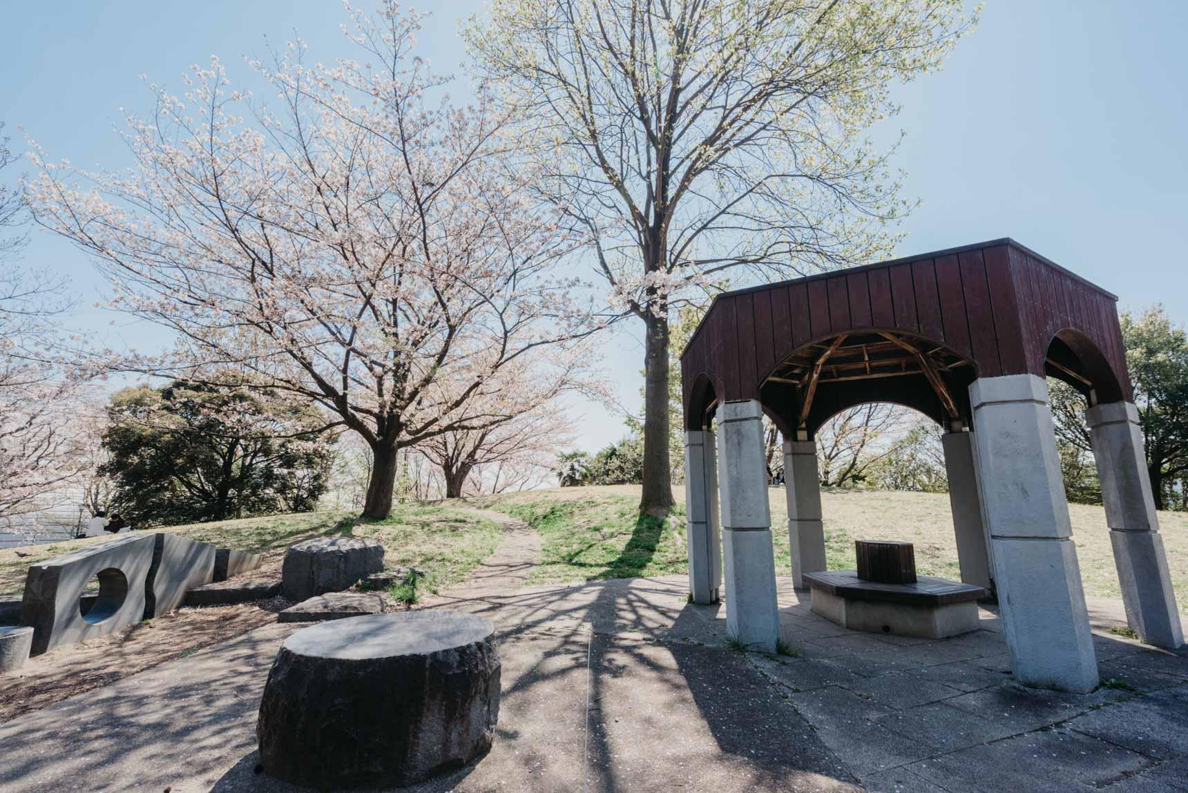 お子さん連れなどで賑わっていた、すぐ近くの公園。ちょうど桜が見ごろで綺麗でした。