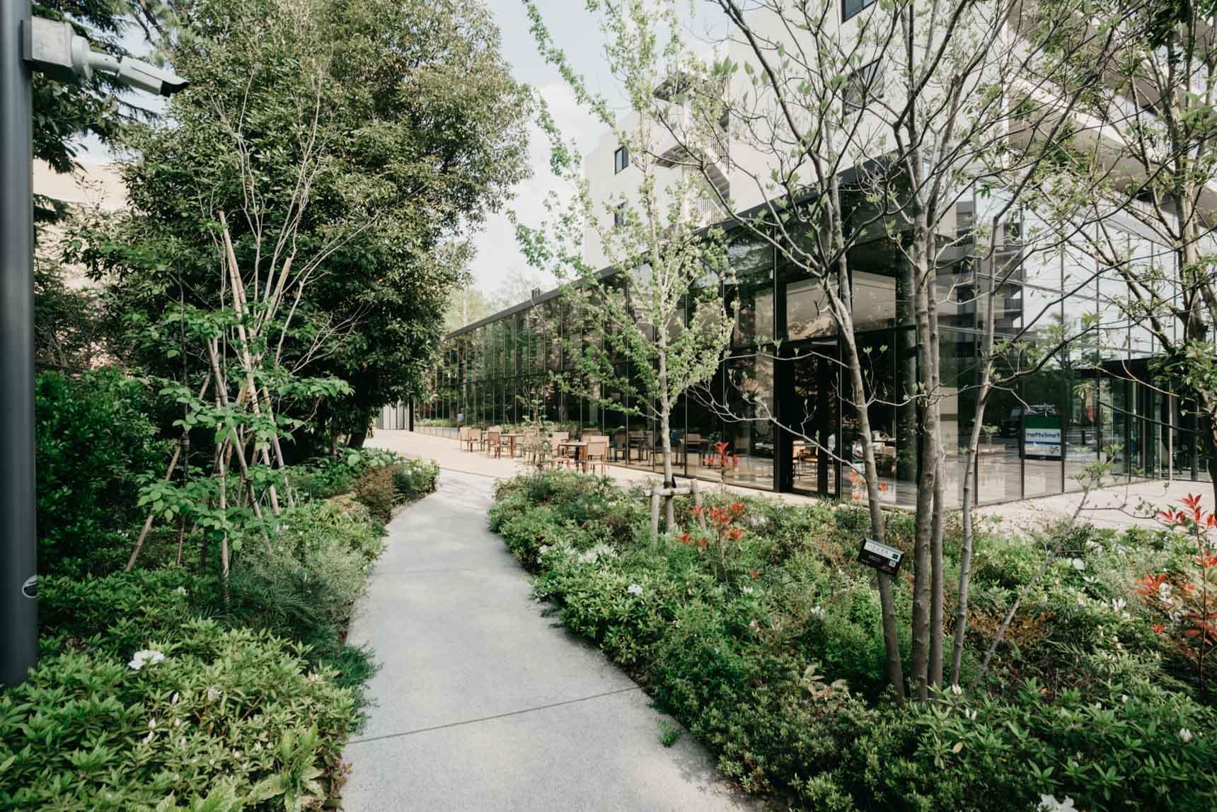敷地内にも、この場所に残っていた林を生かすように、木々に囲まれた遊歩道がたくさん設けられています。