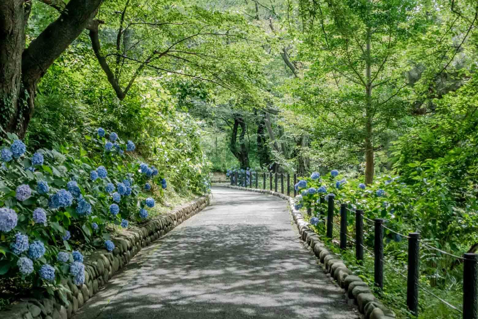 すぐ隣に篠原園地という、これまたナイスなスポットがあります。近くに住んでいたら毎日散歩したい。