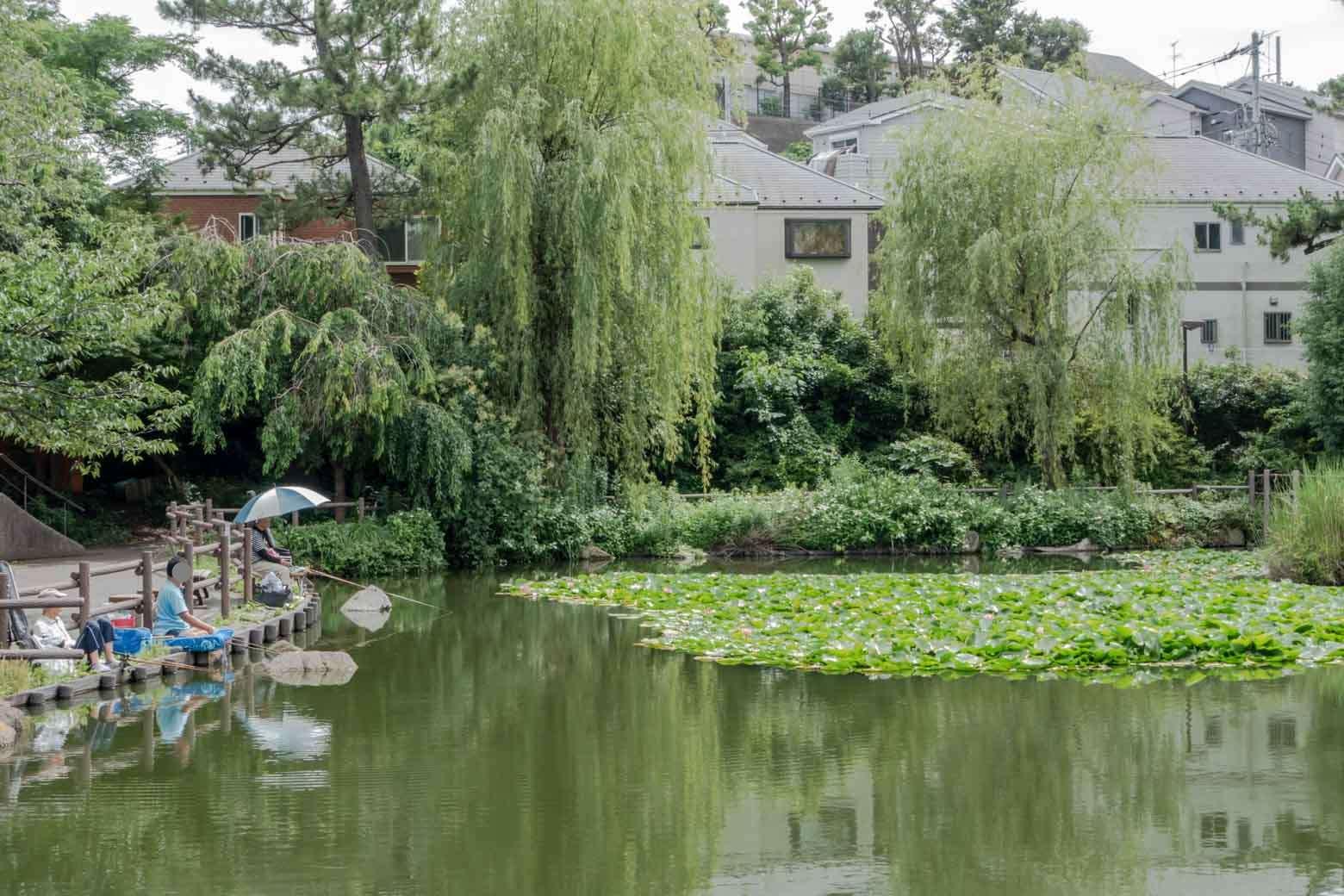 池のある公園が好きです。ついつい深呼吸したくなります。