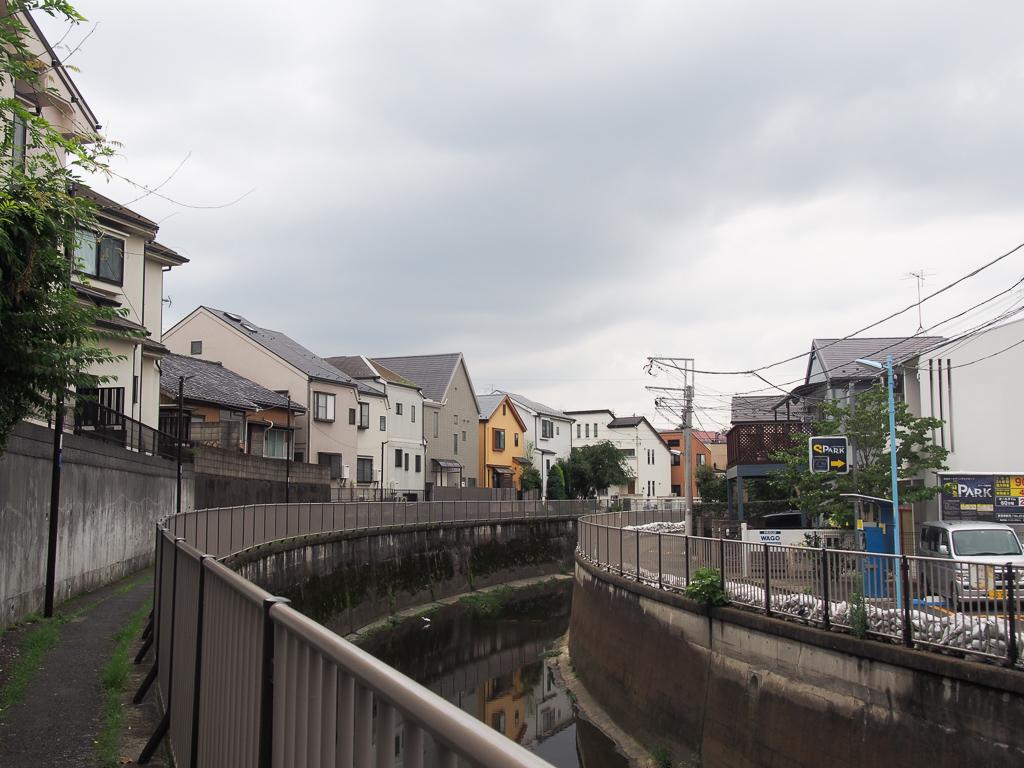 善福寺川沿いの散歩も、気分転換になっていいかもしれない。