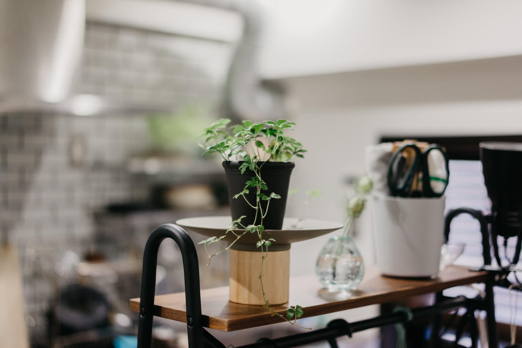 植物を載せていらっしゃるこのアイテムがすごく素敵で、お聞きしてみると、幡ヶ谷のインテリアショップ「BULLPEN」で購入したものとのこと。