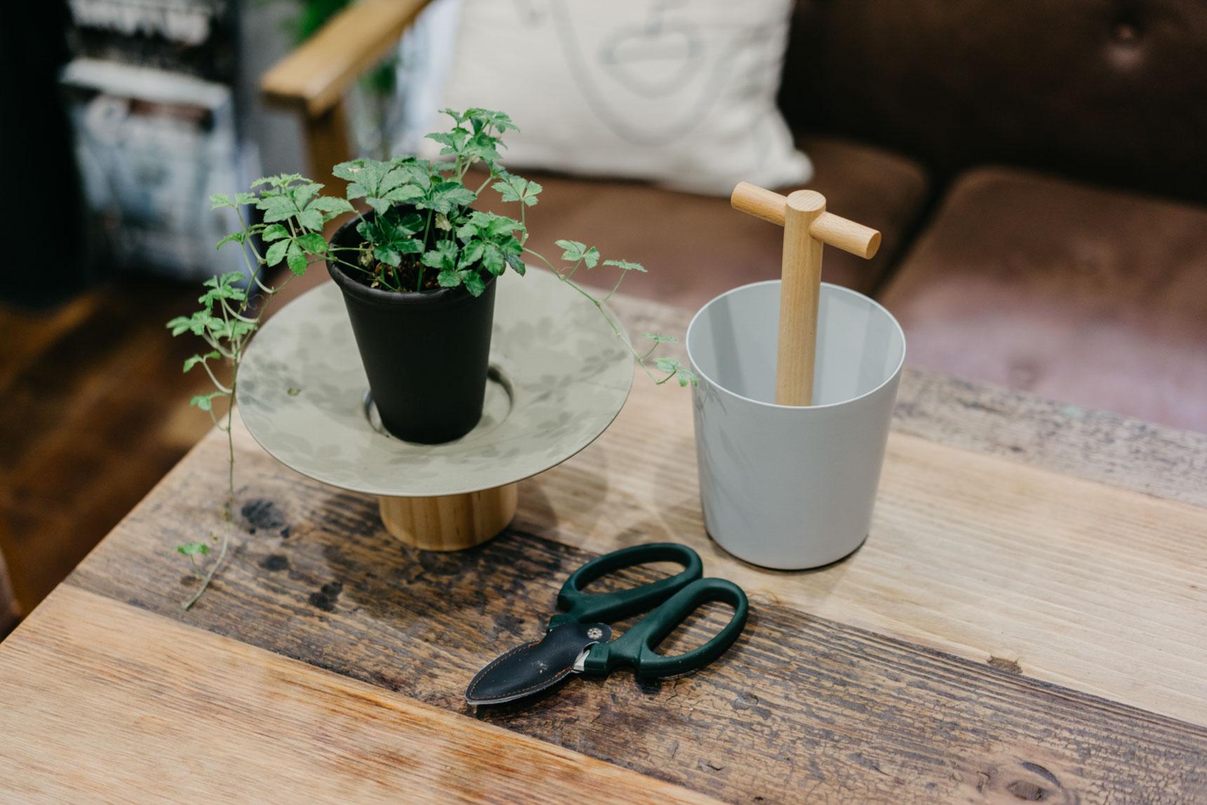 paopaorunrunさんのお部屋では、グリーンをのせるための「Platorm Bowl」と、お手入れアイテムを入れるために「General Bucket」のふたつを愛用中。